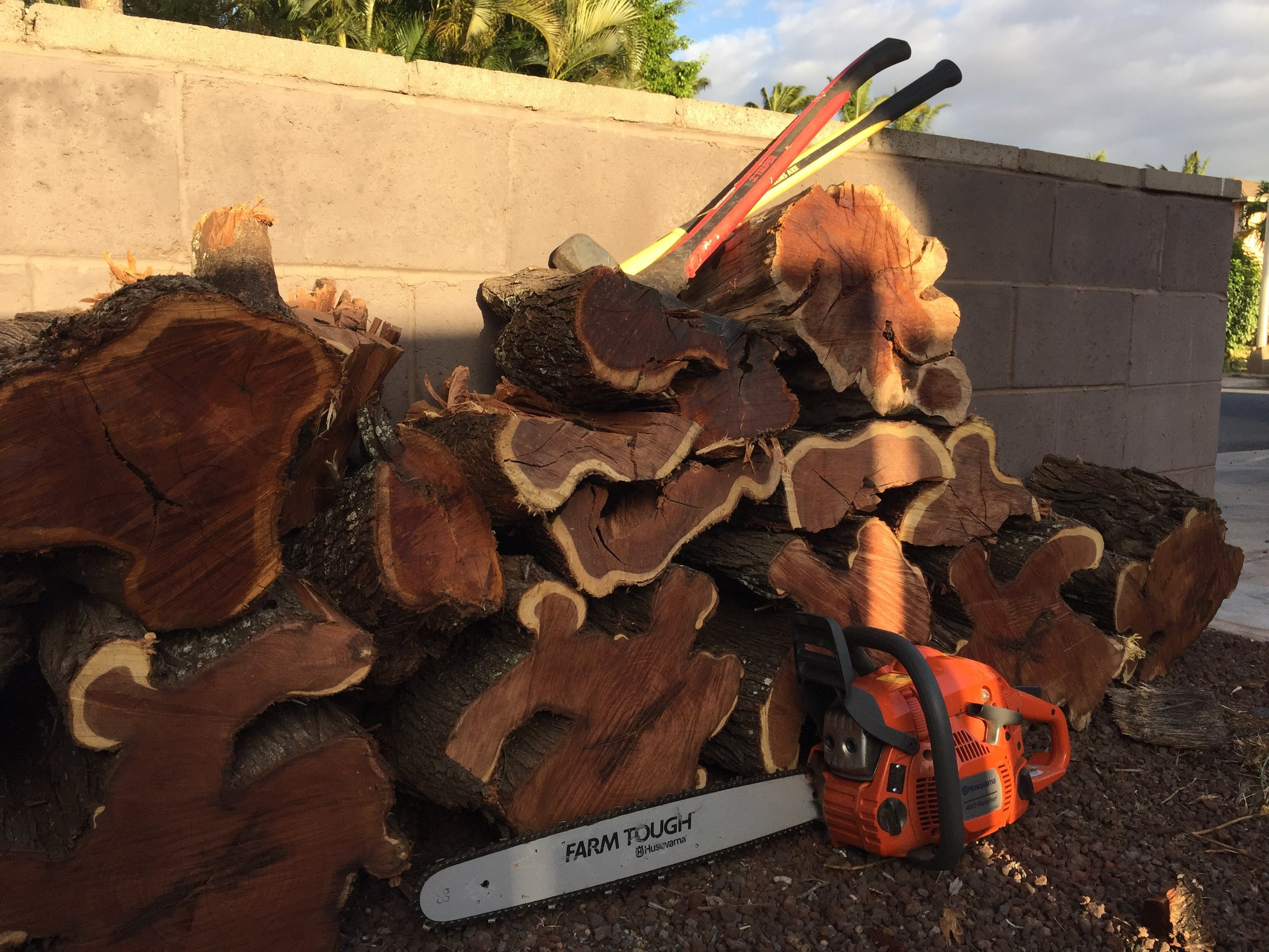 Tools of the trade. A chainsaw, a maul and a splitting axe.