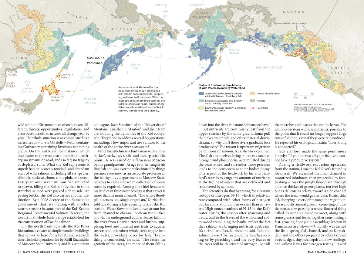 Kamchatka Salmon MM7593-7.jpg