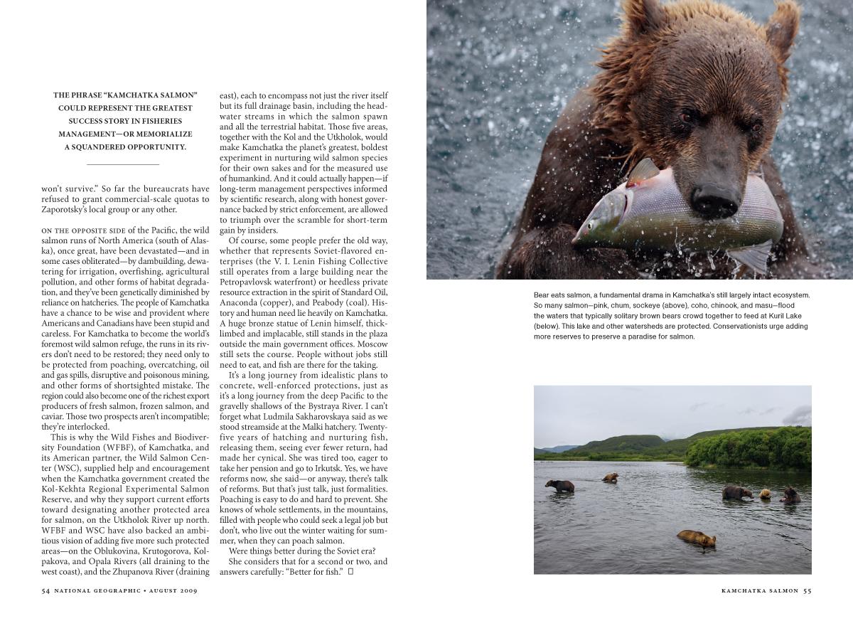 Kamchatka Salmon MM7593-14.jpg