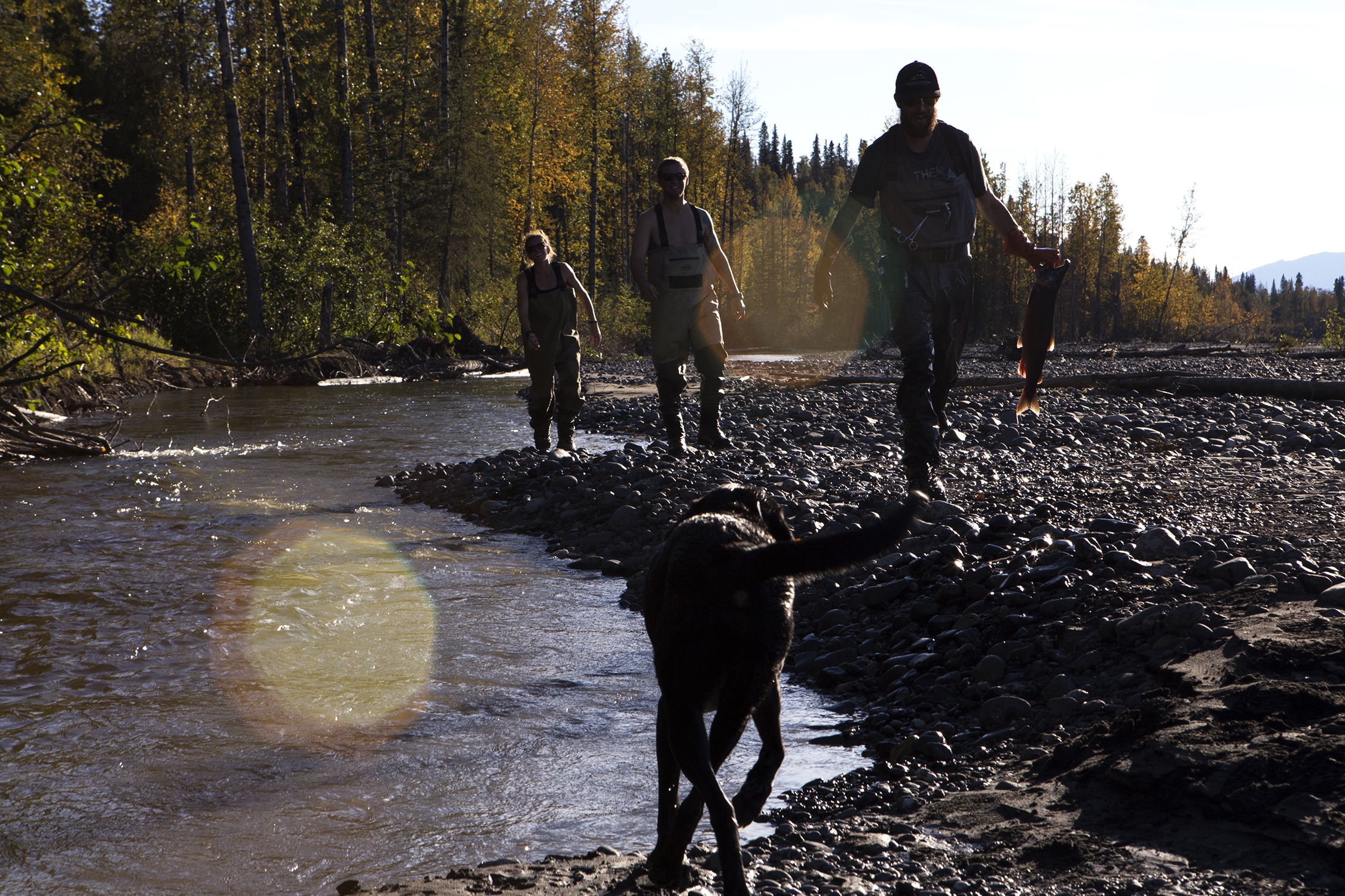 Jensen Heabler, Austin and Whitney Krempin enjoy the autumn afternoon hiking and catching Silvers and Reds along a stream outside Talkeenta, Alaska. © Photo by Gail Fisher
