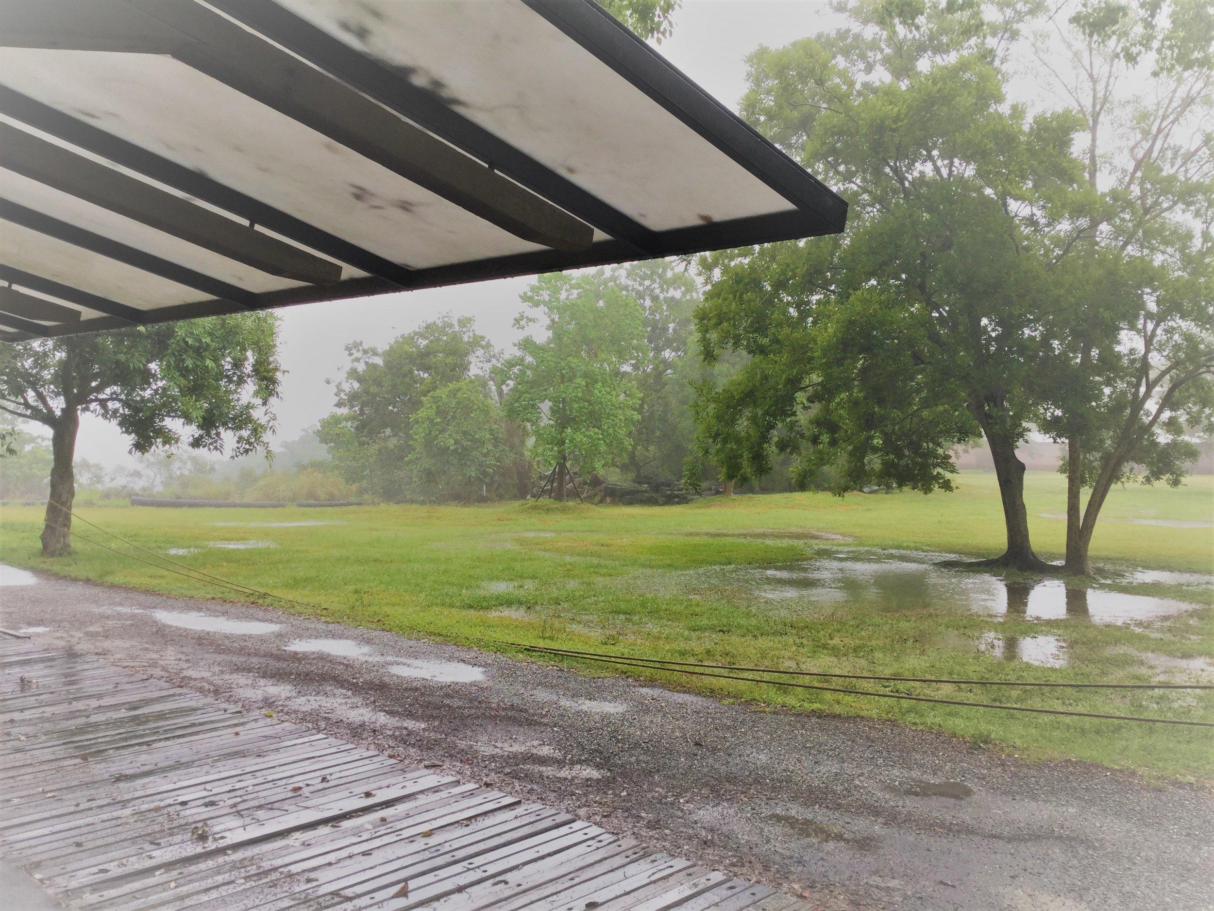 老天給的雨.JPG