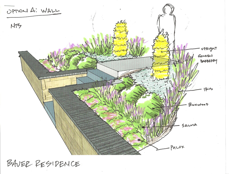Bauer Wall Option.jpg