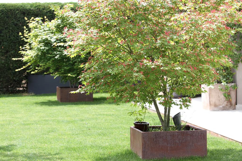 Jardín_17.JPG