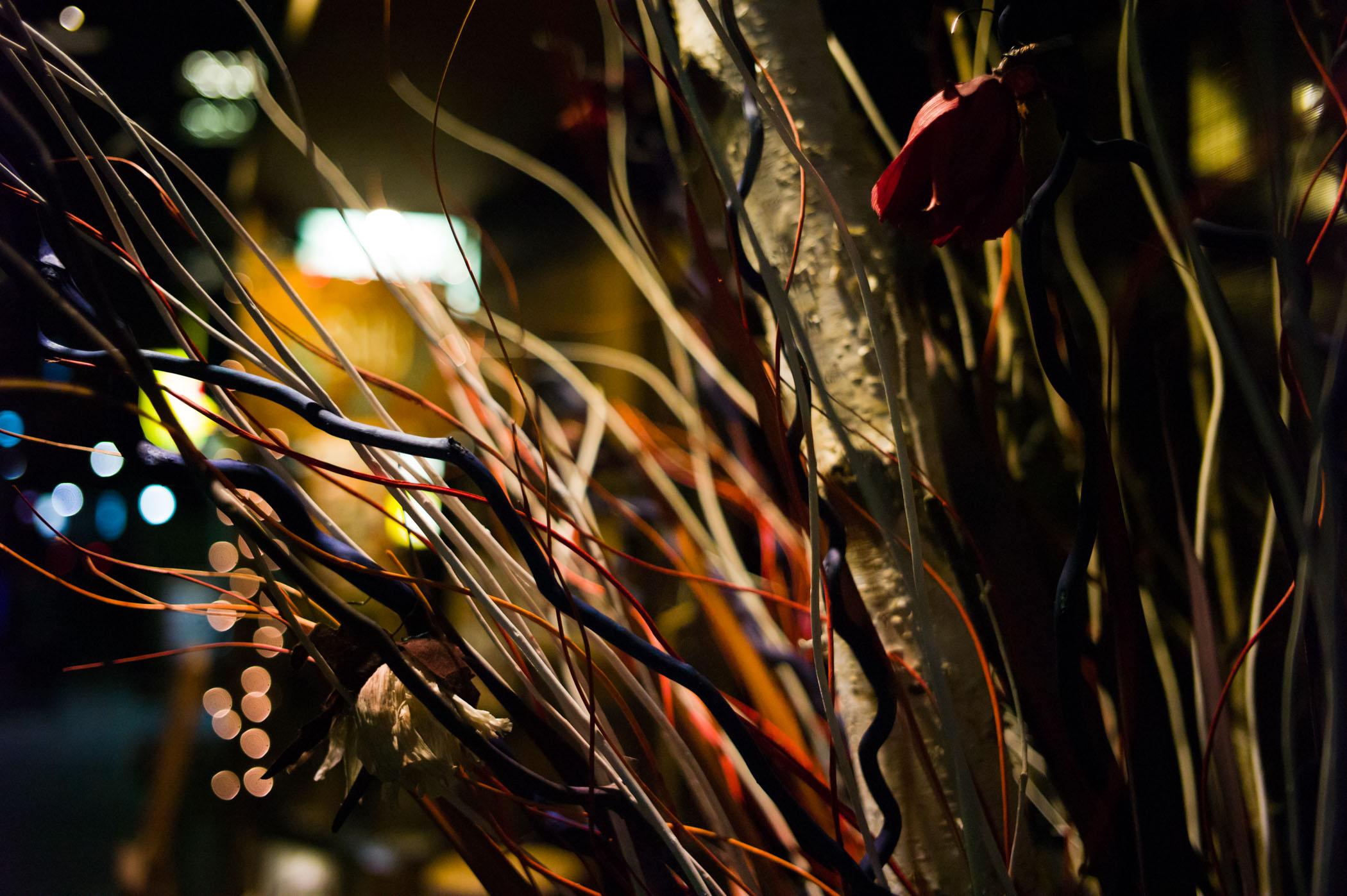 Akasaka, Tokyo, Japan Summicron 35/2 ASPH Leica M-E ISO1600