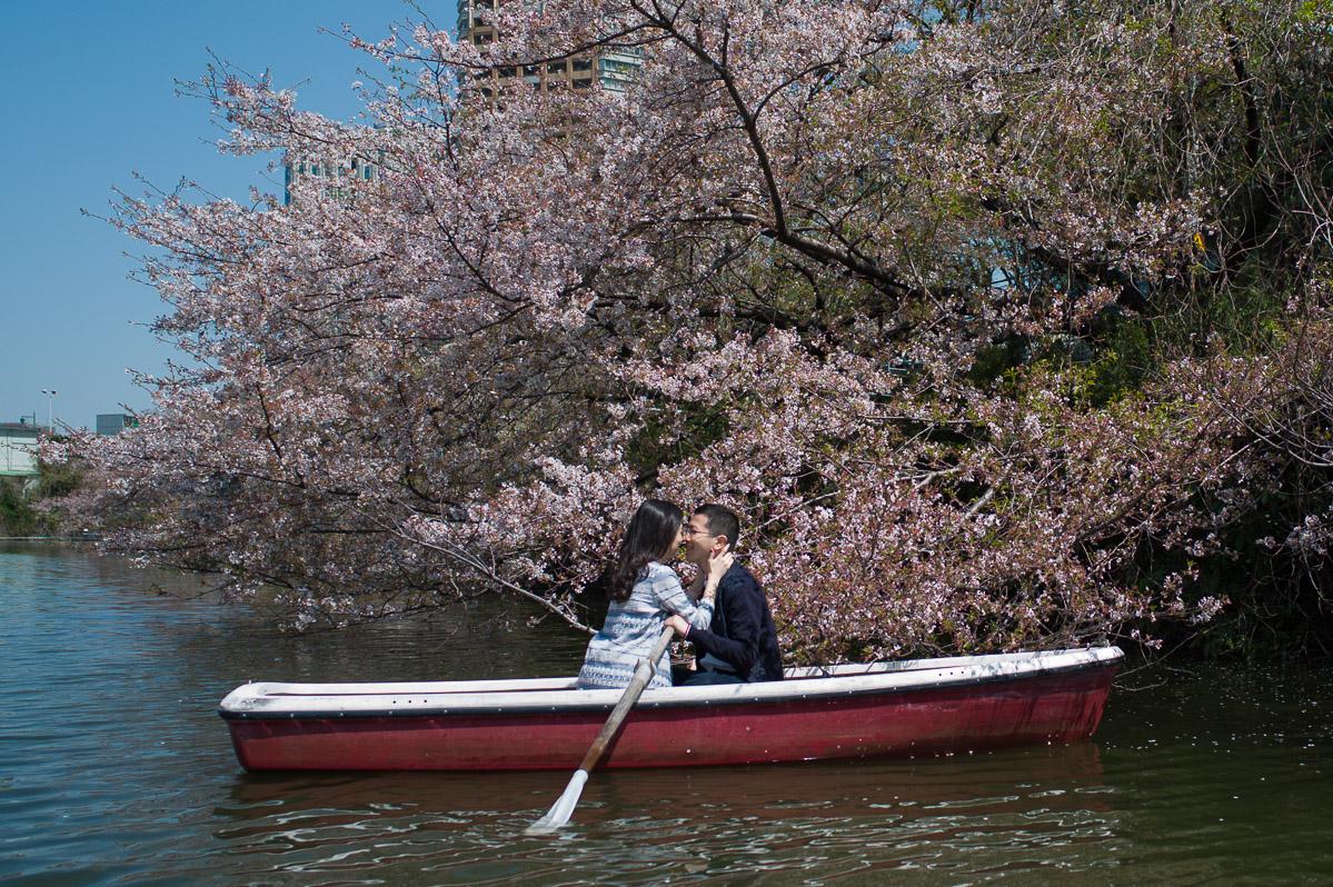 Boat ride during cherry blossom season in Tokyo, Iidabashi