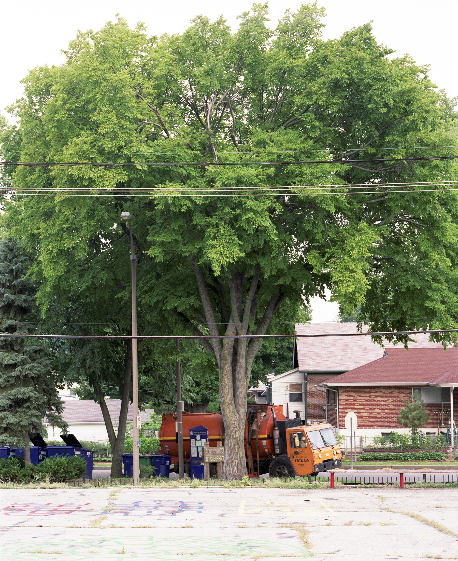 Tree and Trash Truck, 2009