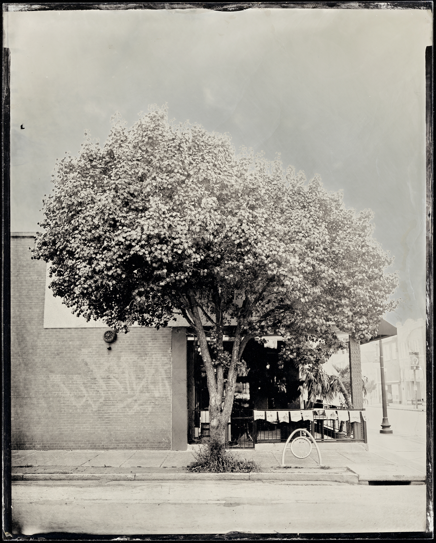 St. Louis Ambrotype No. 094