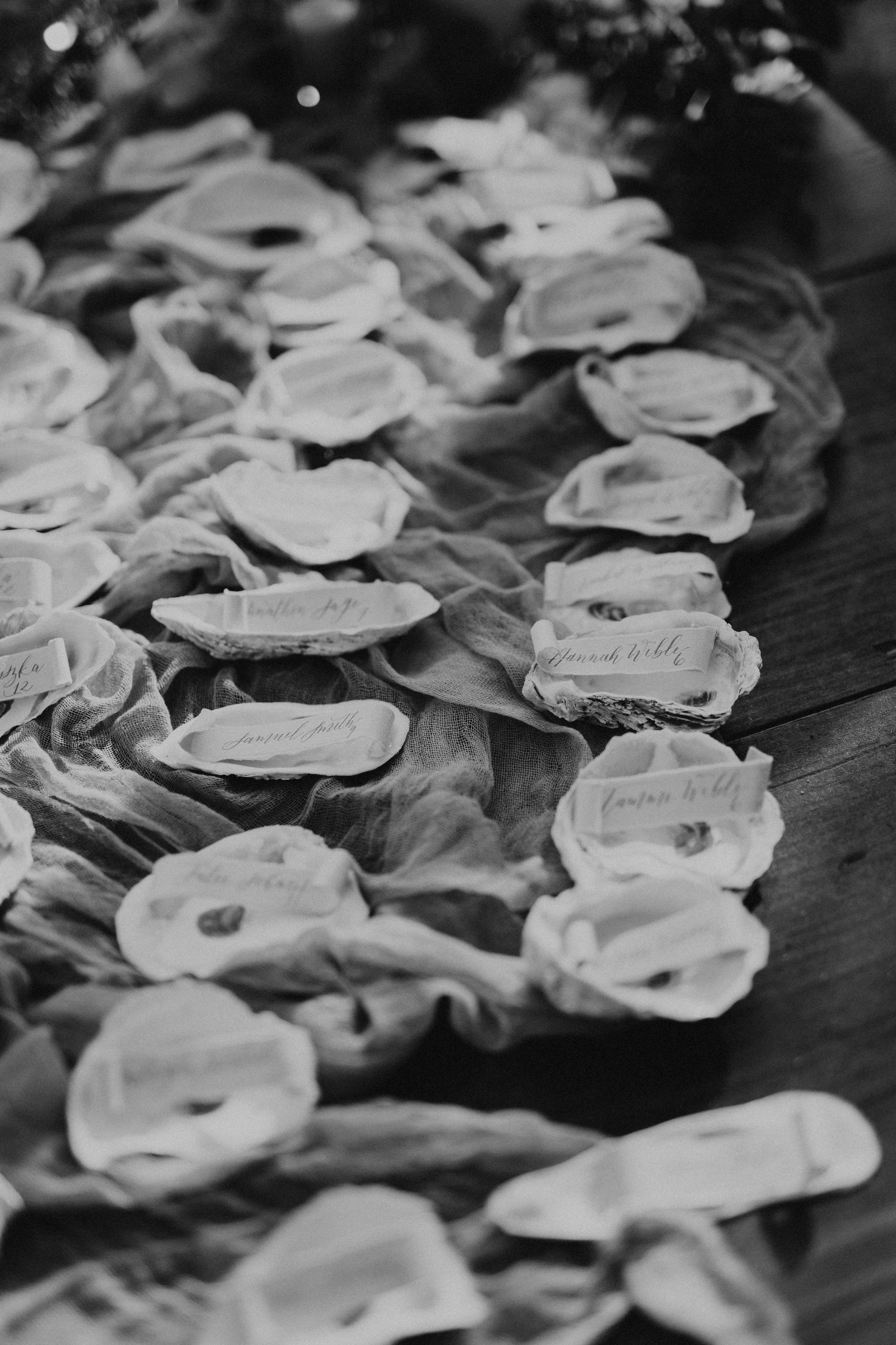 Escort Cards in Oyster Shells