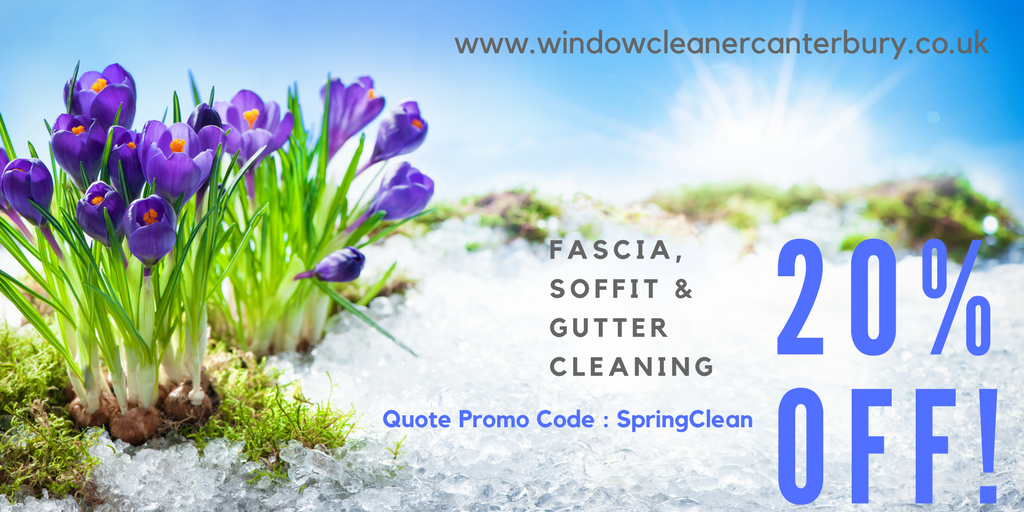 spring-clean-20-percent-off.png