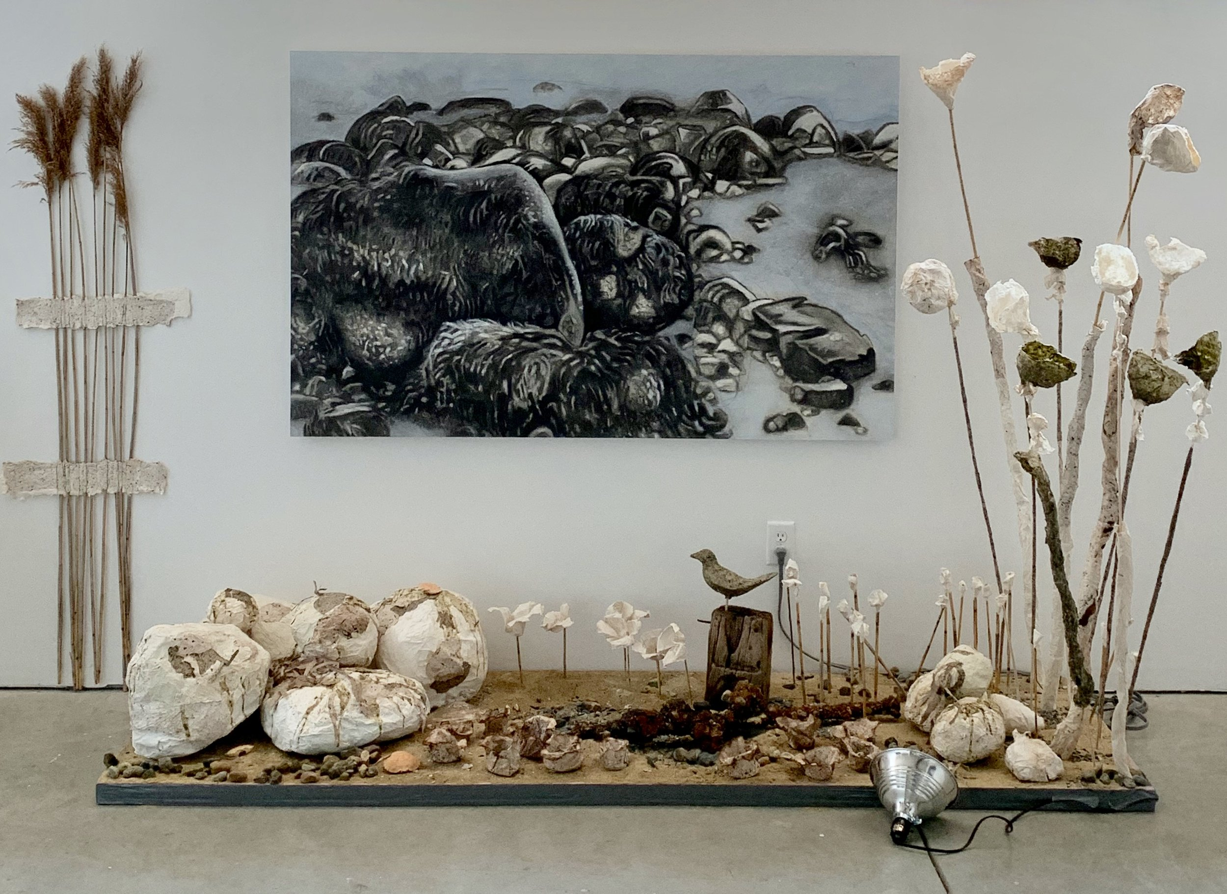 Installation shot, Galatea Fine Art, Boston  Sea Rock Sculpture Garden .  Handmade paper from seaweed, abaca and cotton pulp with charcoal drawing in background, rocks, sand, reeds, pebbles, and found objects on fiberglass insulation.