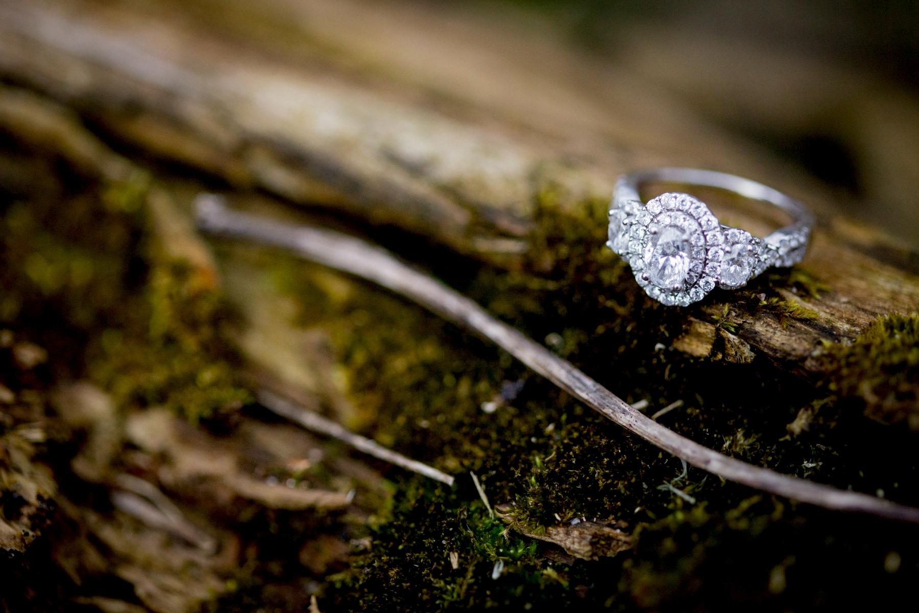 Brandon_Shafer_Photography_Kim_Nick_Engagement_0012.jpg