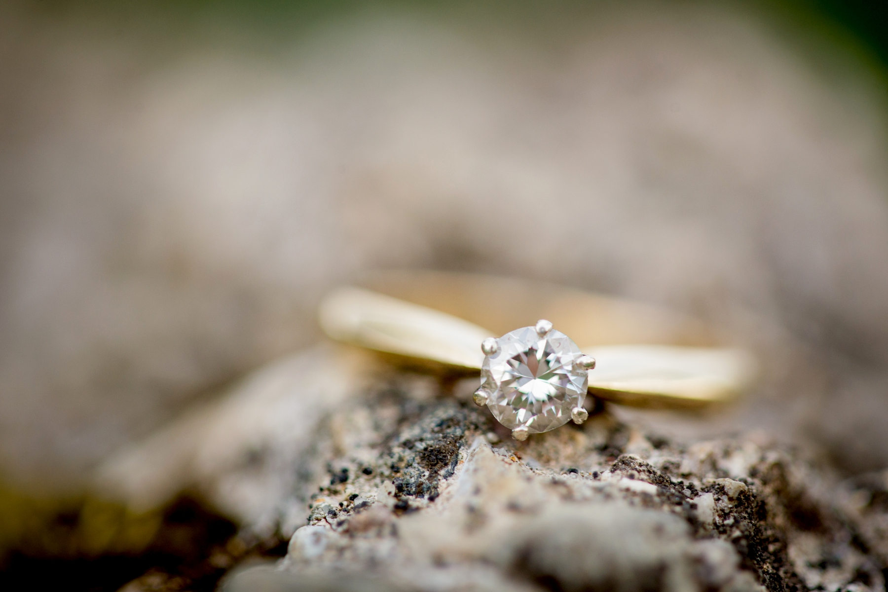 Brandon_Shafer_Photography_Shane_Ashley_Greenhouse_Farm_Michigan_Engagement_0030.jpg