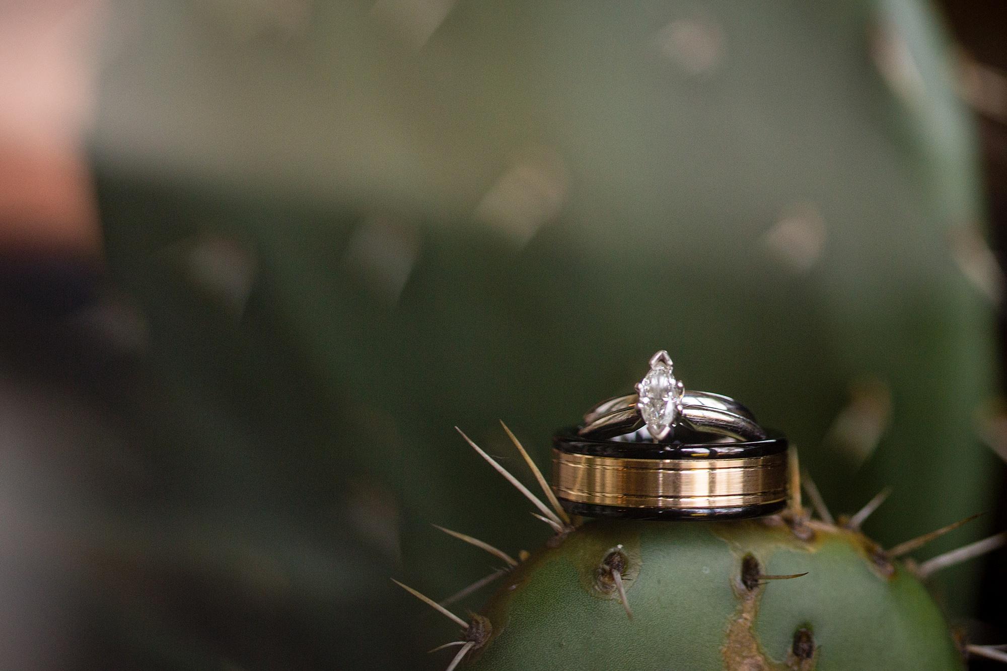 Brandon_Shafer_Photography_Emily_Travis_Kalamazoo_Wedding_Photography_0007.jpg