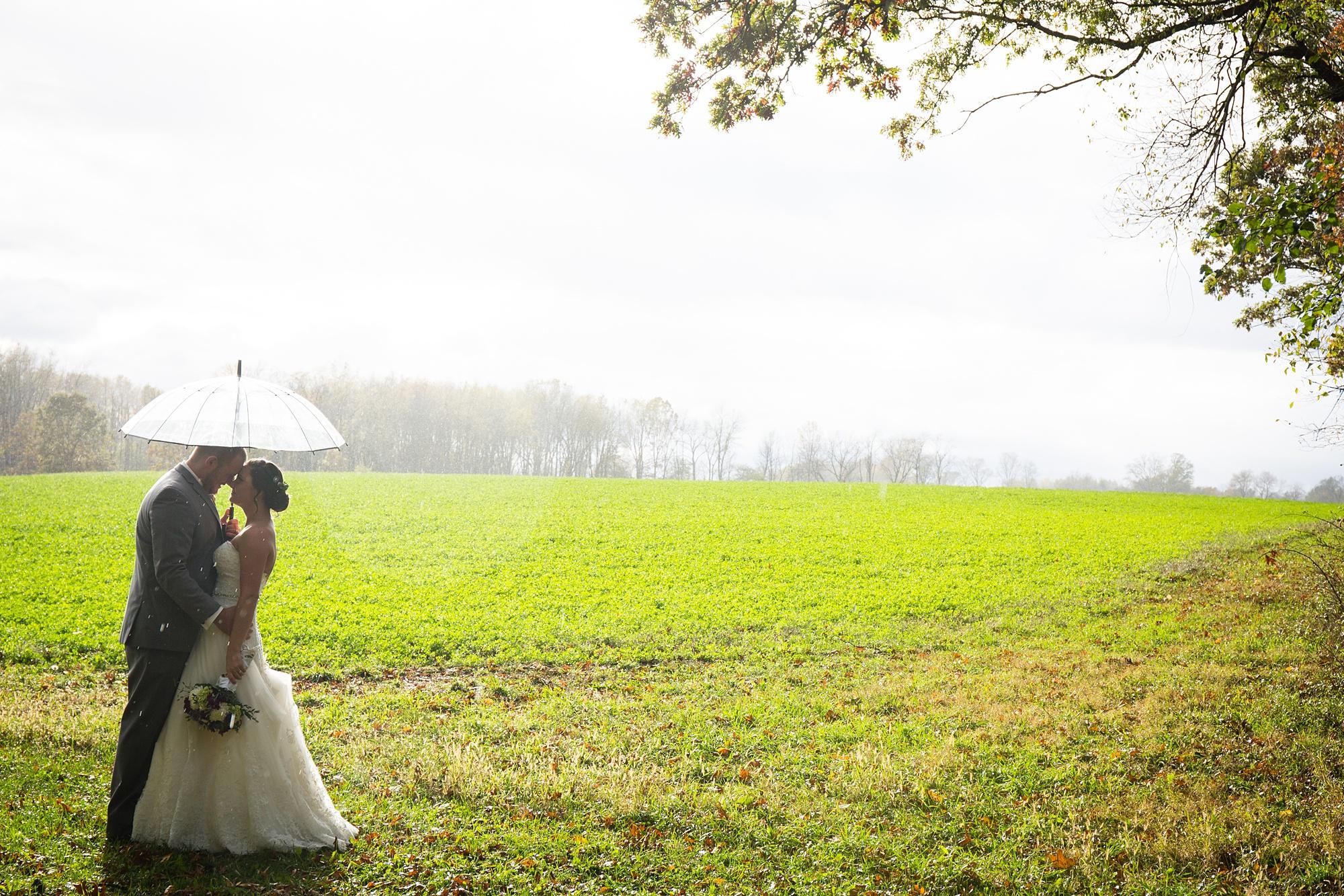 Brandon_Shafer_Photography_Emily_Travis_Kalamazoo_Wedding_Photography_0037.jpg