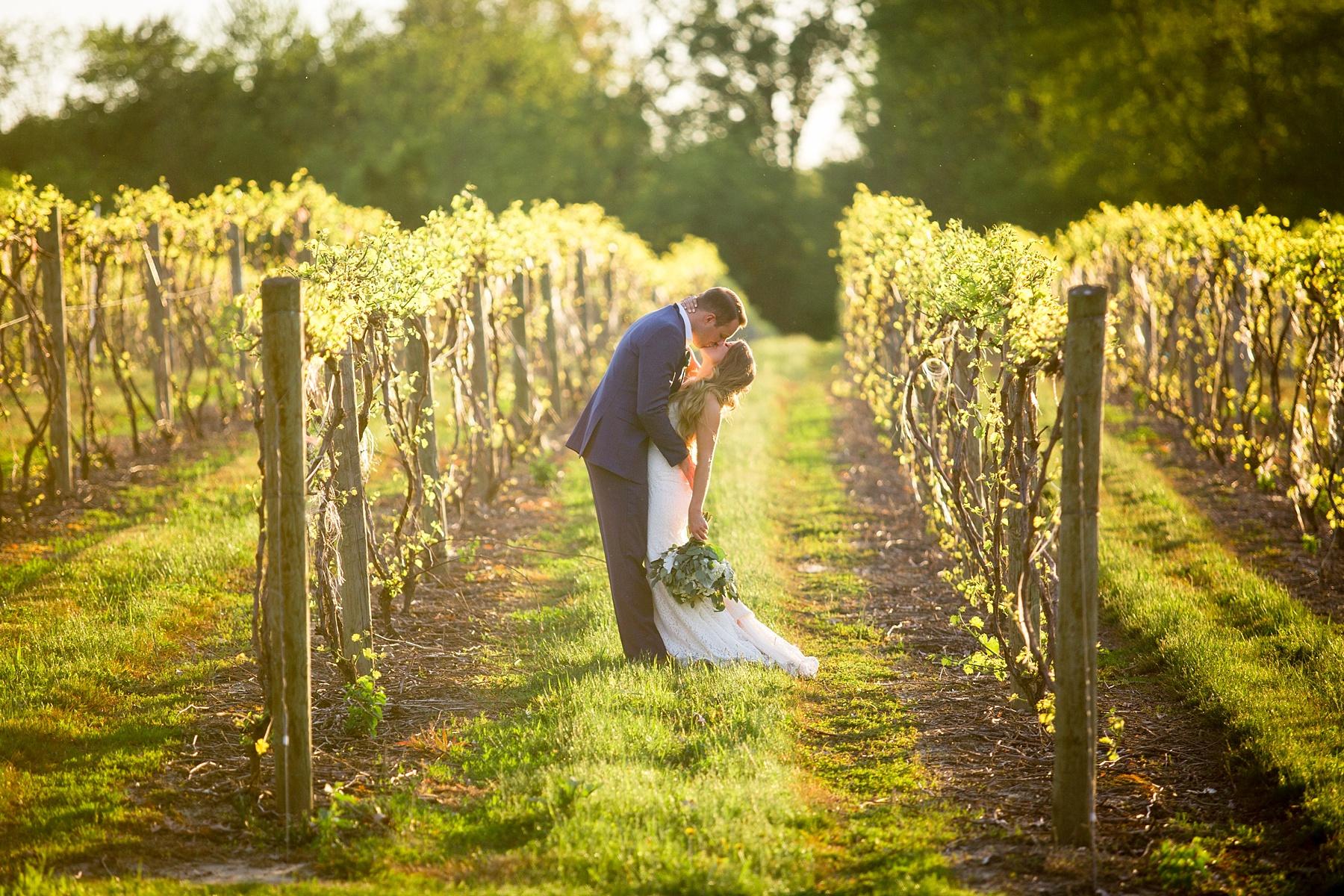 Brandon_Shafer_Photography_Kara_Doug_12_corners_Wedding_Benton_Harbor_0082.jpg