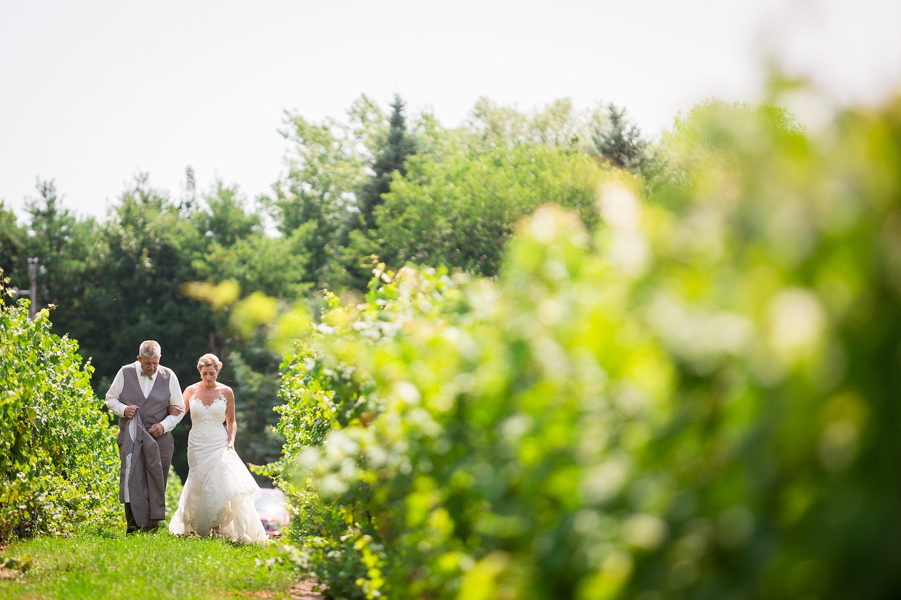 Brandon_Shafer_Photography_Lauren_Vasile_Ciccone_Vineyard_Suttons_Bay_Wedding_0015.jpg