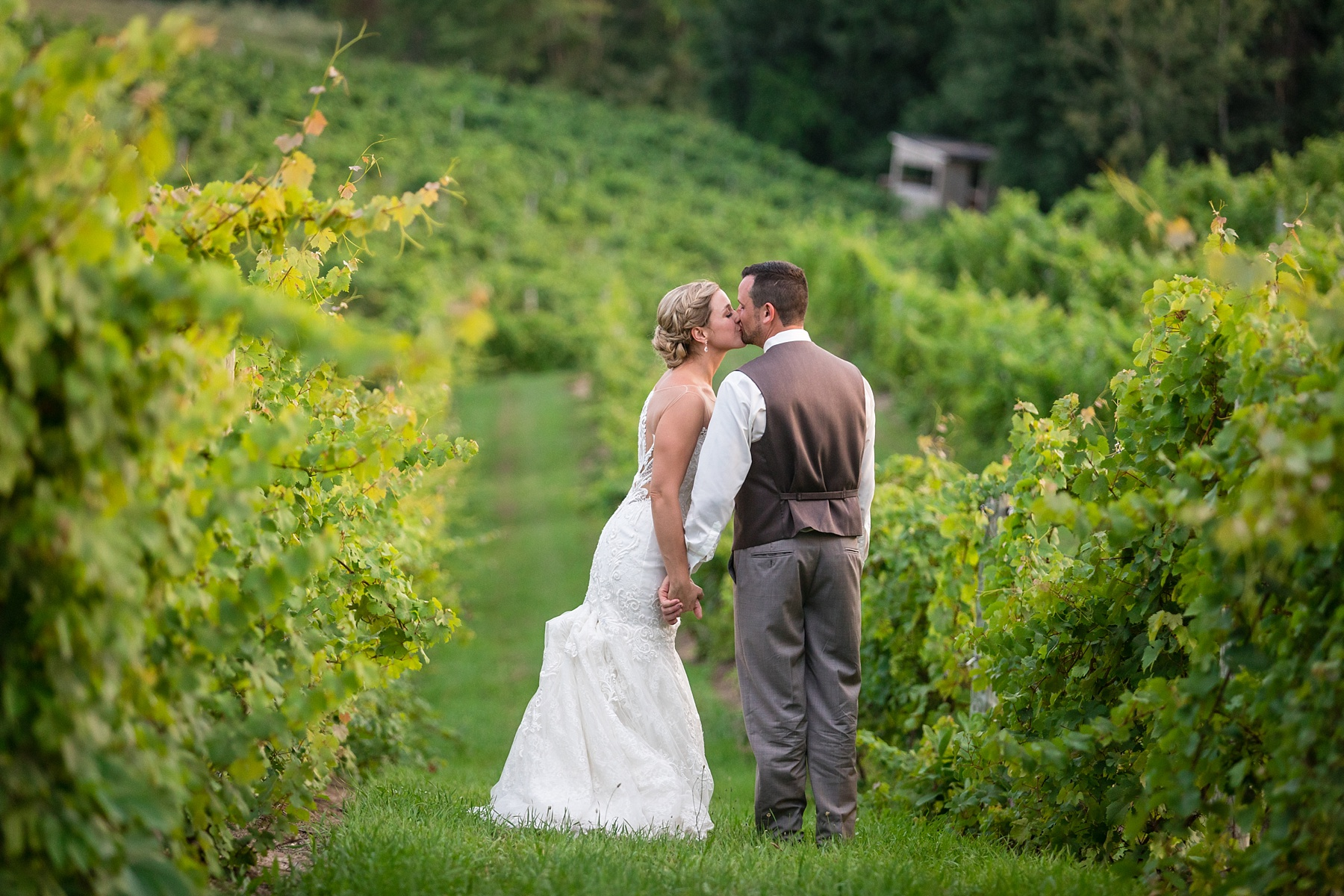 Brandon_Shafer_Photography_Lauren_Vasile_Ciccone_Vineyard_Suttons_Bay_Wedding_0061.jpg