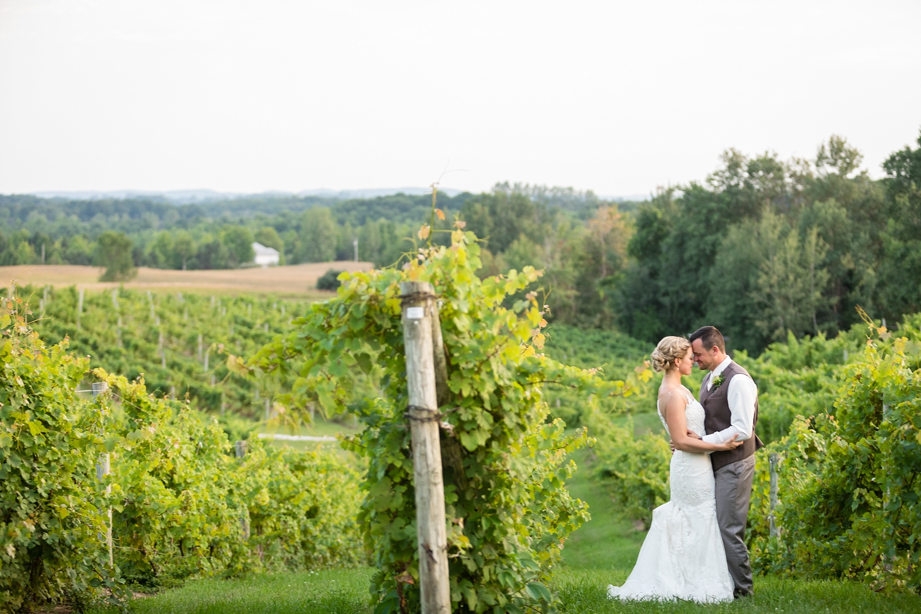 Brandon_Shafer_Photography_Lauren_Vasile_Ciccone_Vineyard_Suttons_Bay_Wedding_0063.jpg