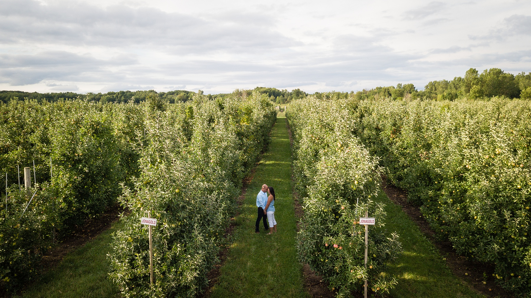 Brandon_Shafer_Photography_Danielle_Matt_Apple_Orchard_Engagement_Photos_0018.jpg