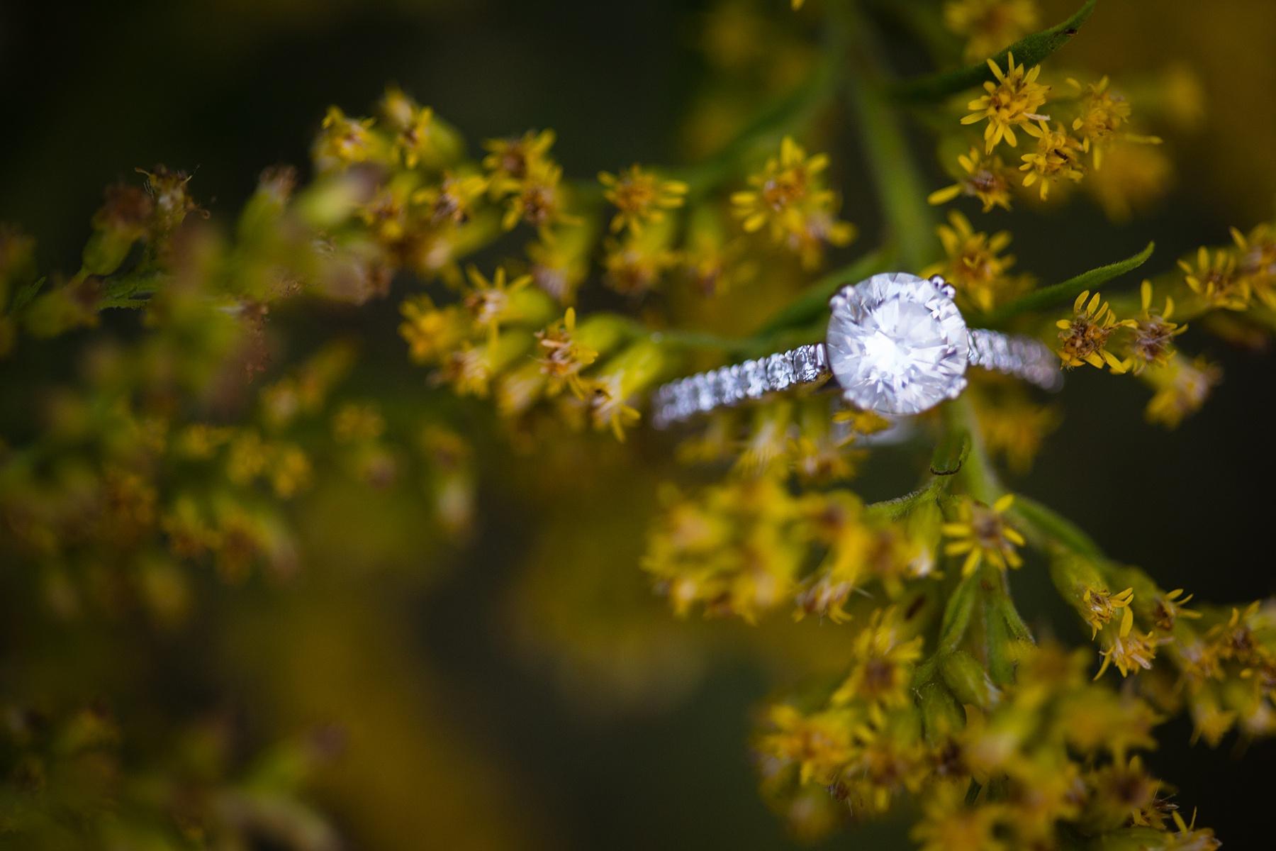 Brandon_Shafer_Photography_Megan_Nate_West_Michigan_Engagement_Photos_0020.jpg