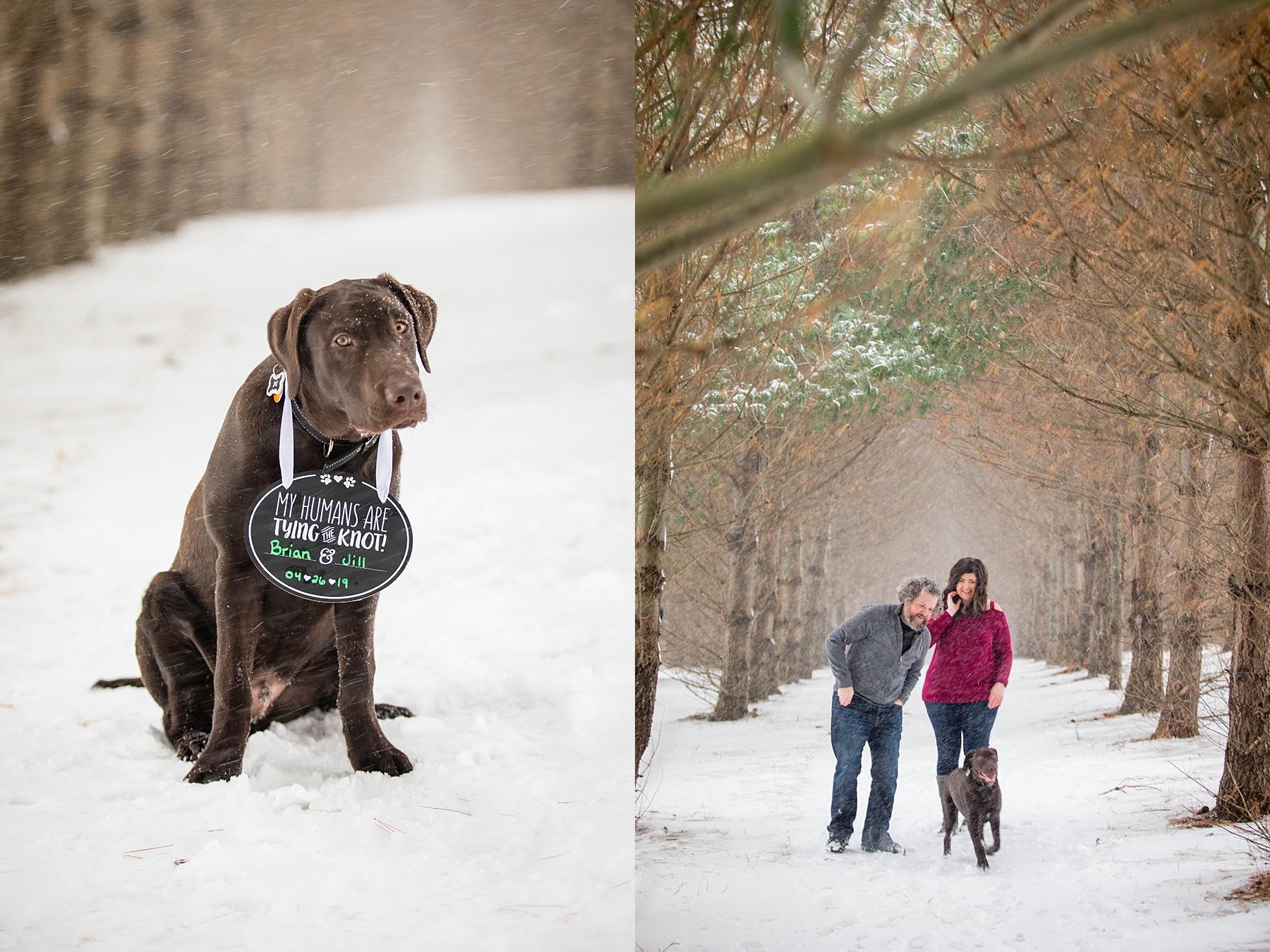 Brandon_Shafer_Photography_Winter_Engagement003.JPG