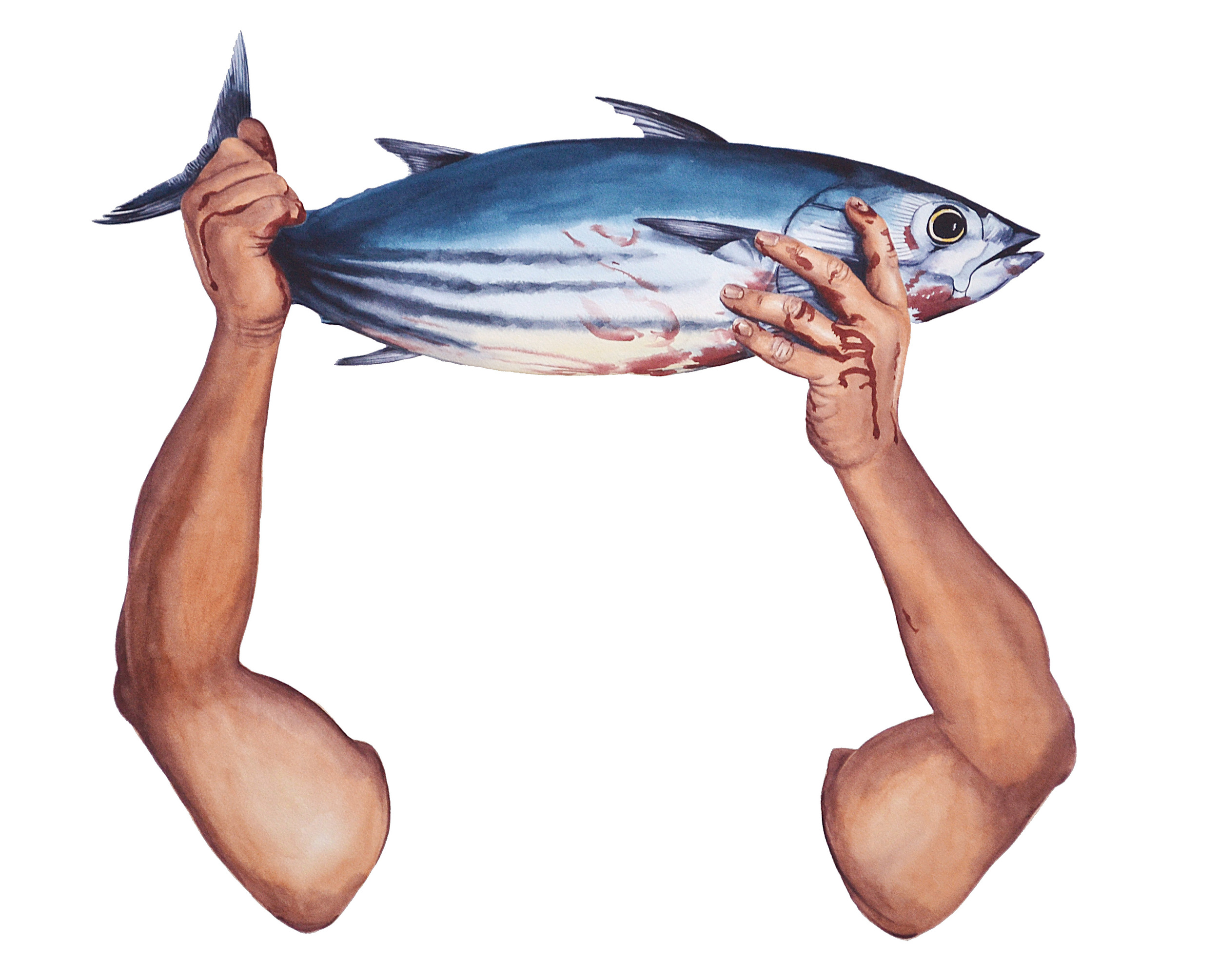Caught II (tuna)