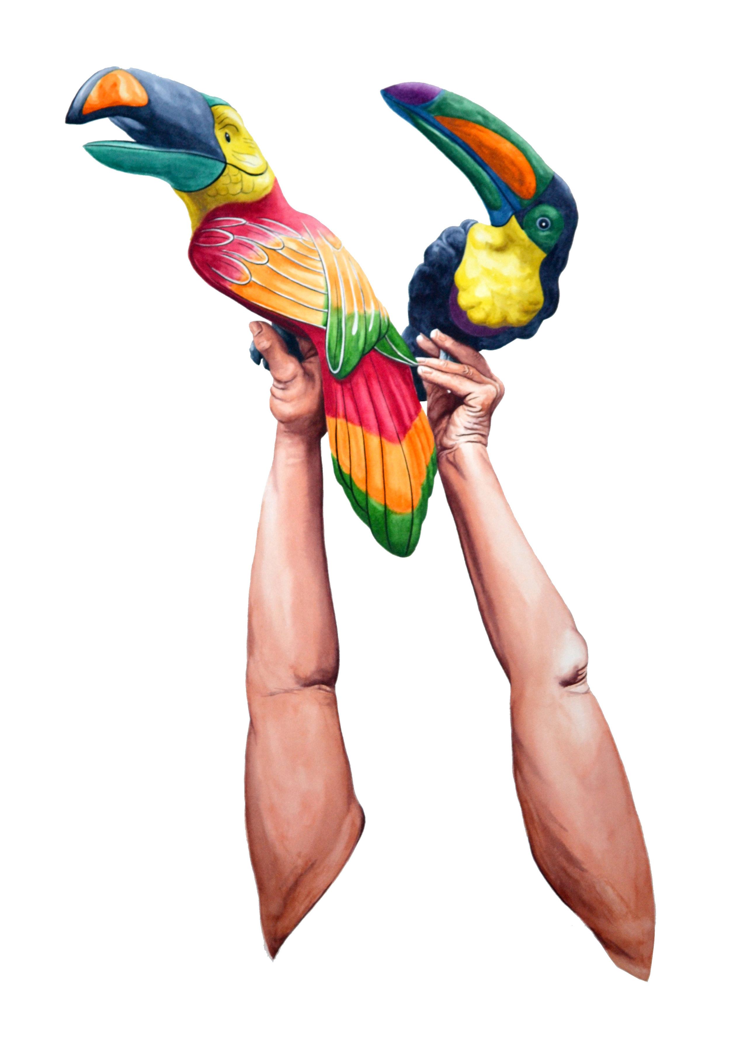 Fake I (toucans)