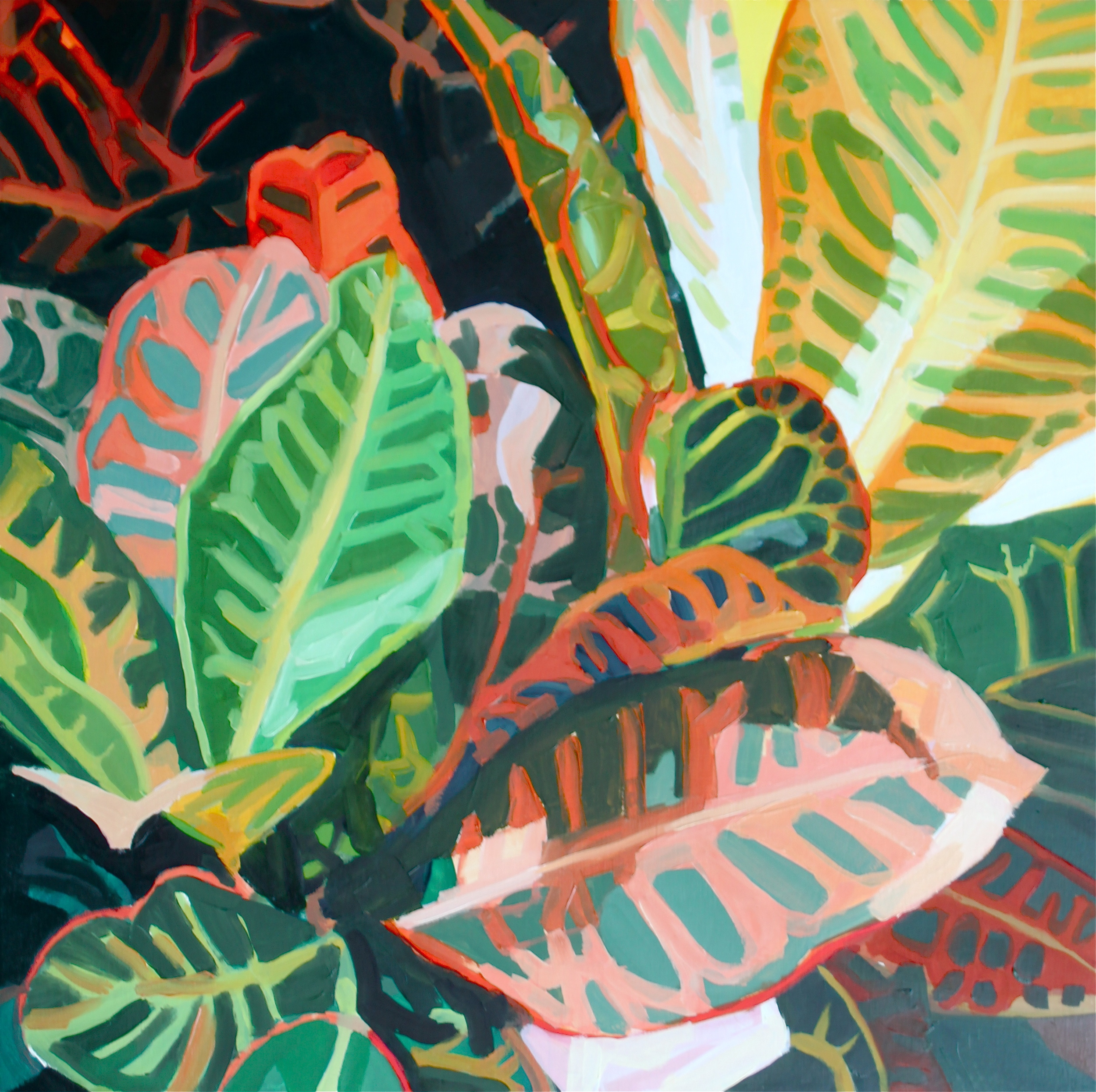 Erin Fitzpatrick, Plant Study 1