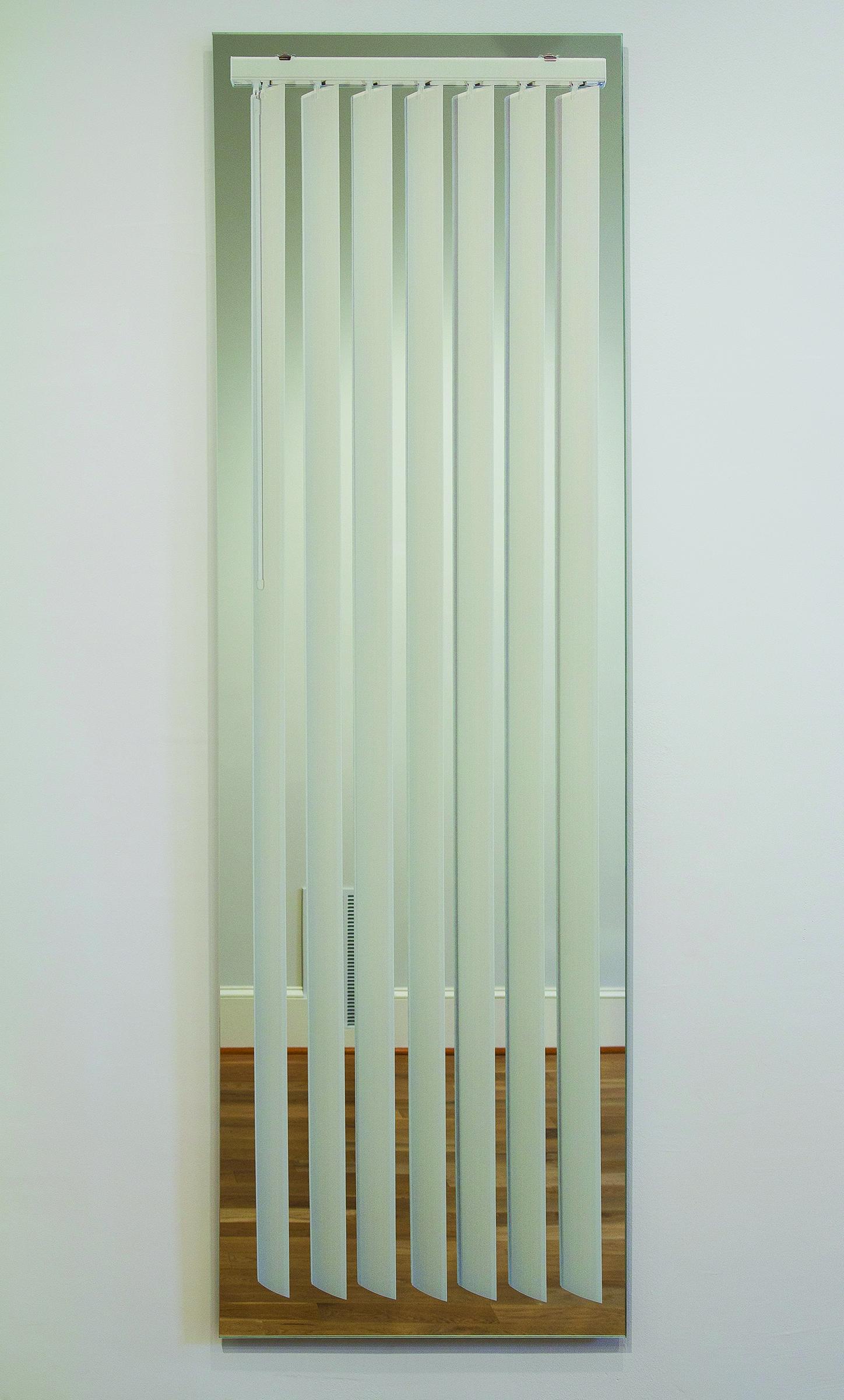 LisaDillin_Window_E Vertical_Blinds_on_Mirror_2012.jpg