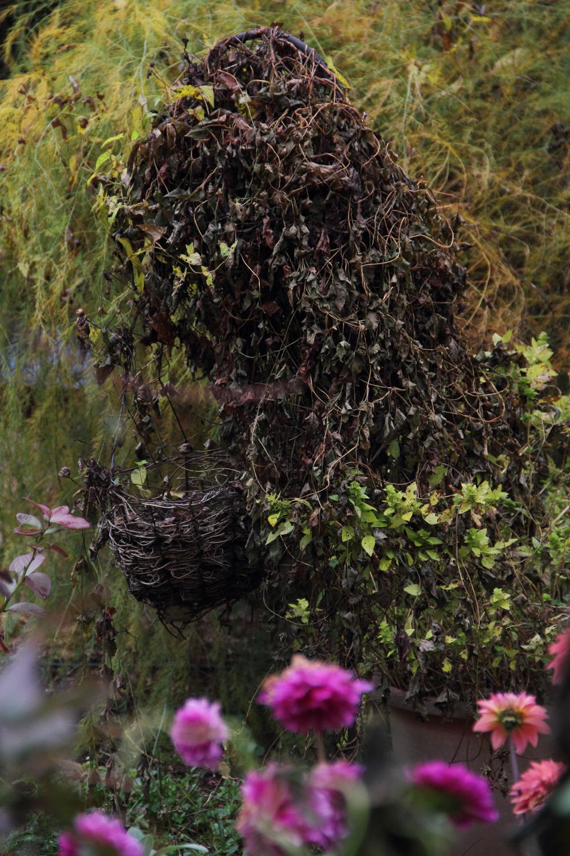 garden20150005.jpg