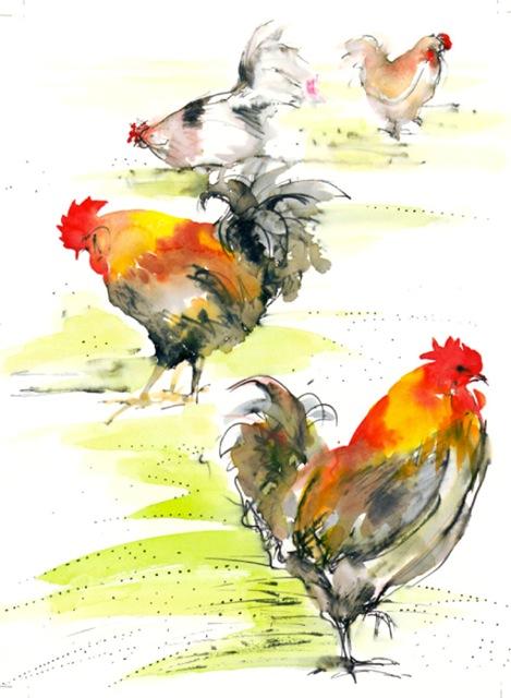 chicken foursome lr-1.jpeg