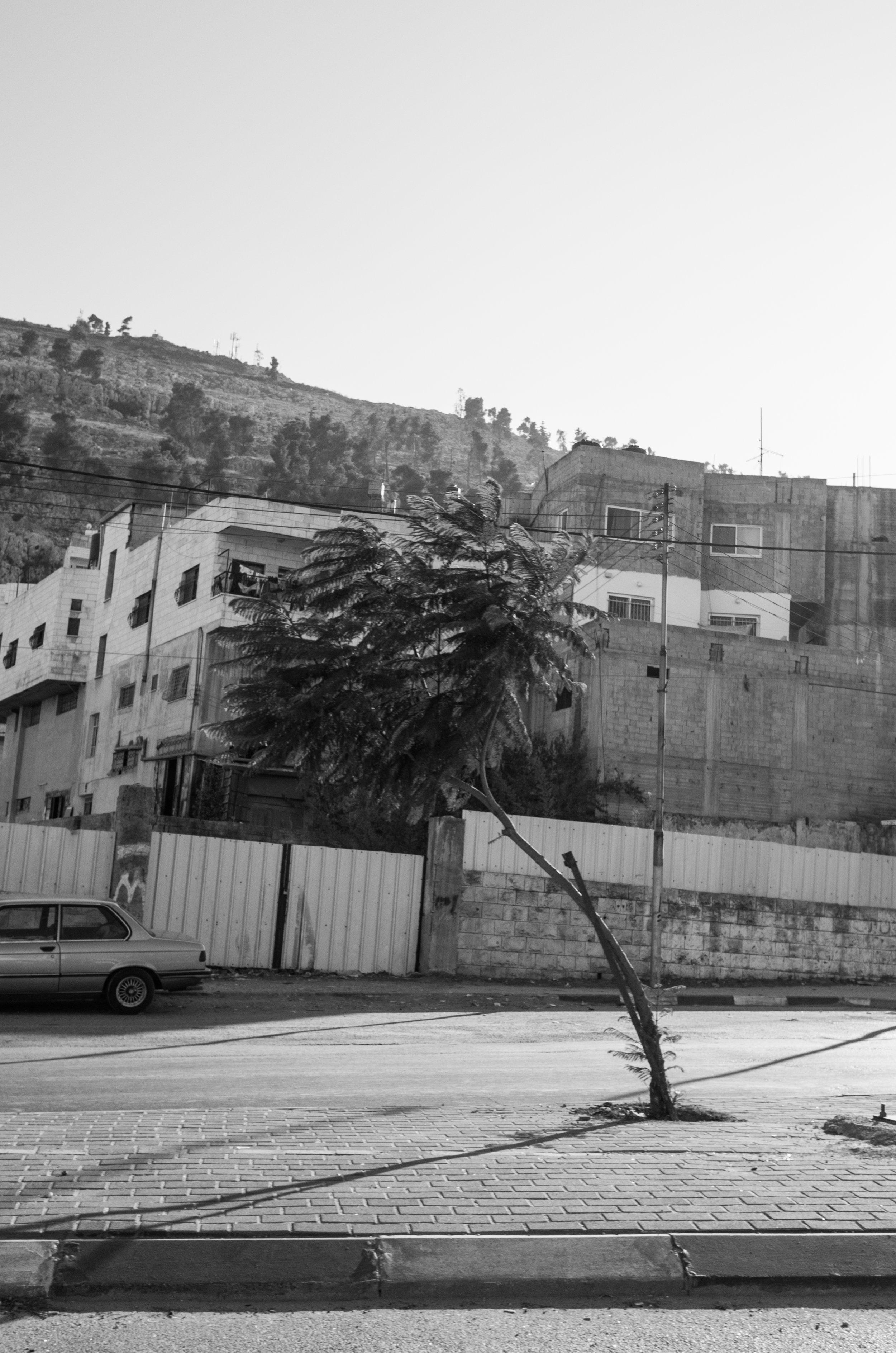 Hebron, 2017