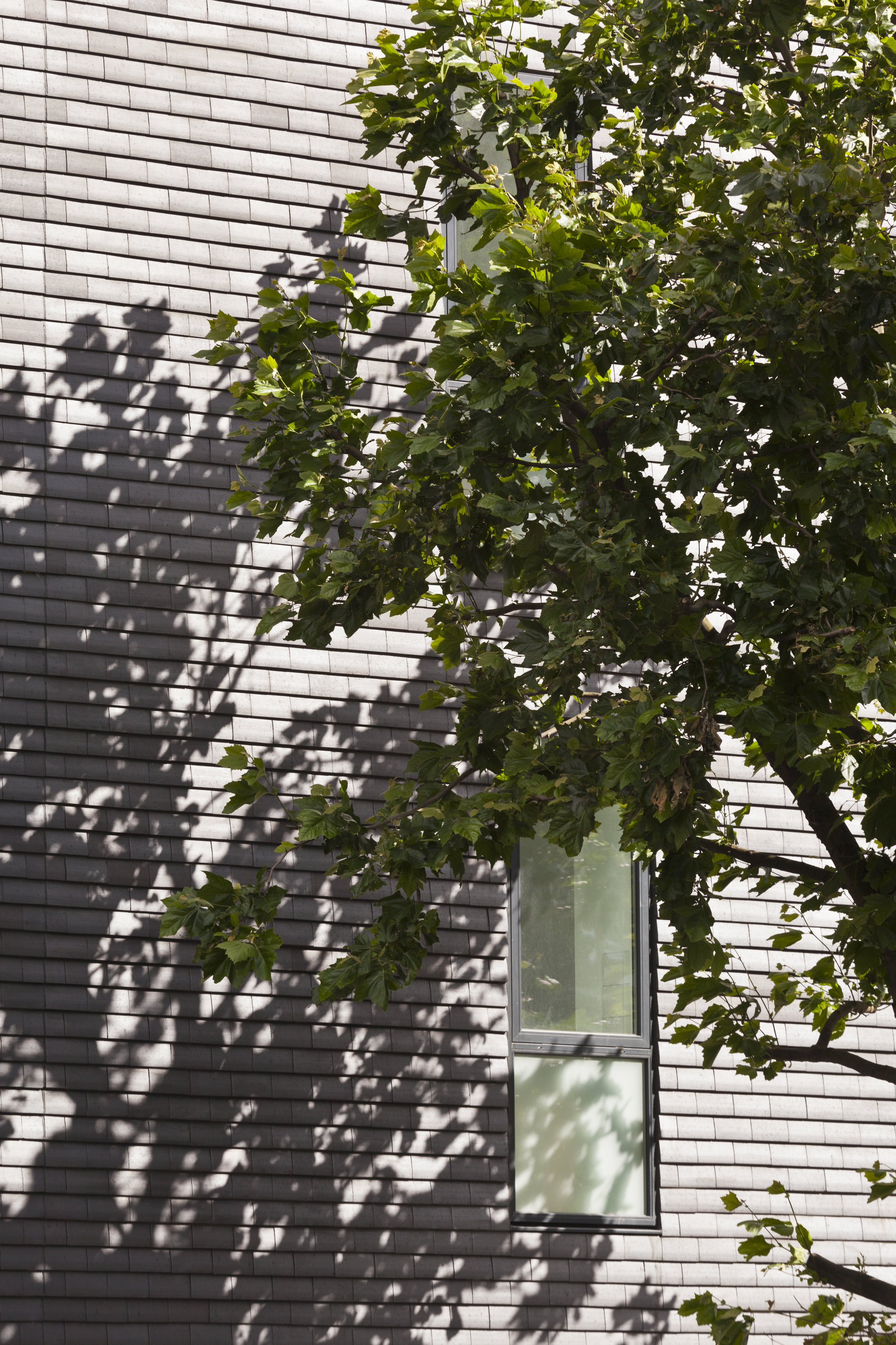 Window Detail of Housing Development for Igloo Regeneration and Hexagon Housing in Bermondsey