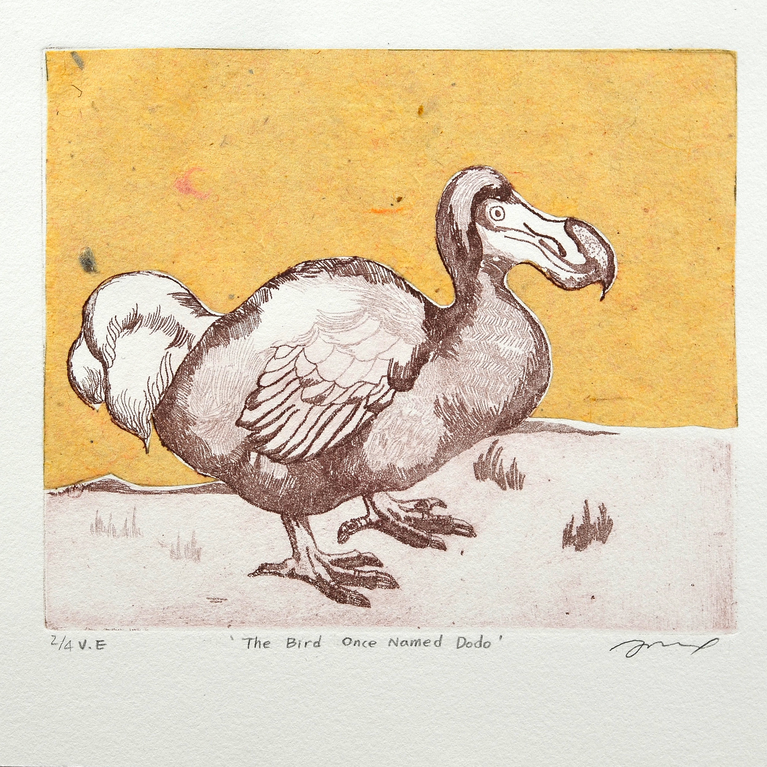 Heejung Yi    The bird once named Dodo   Etching