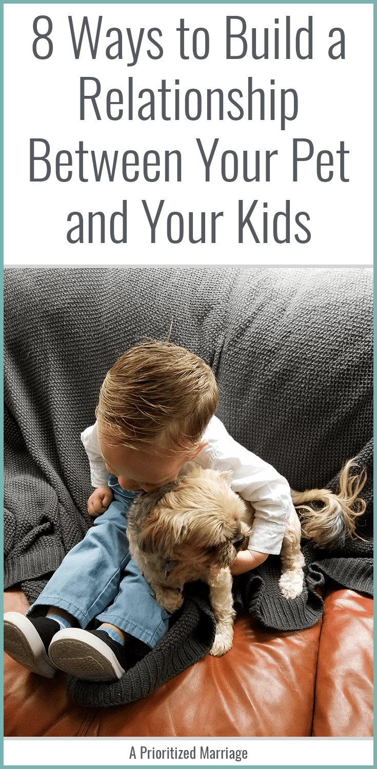 Your pets and your children can be the best of friends for life, if you make an effort to help them build a good relationship from the beginning.