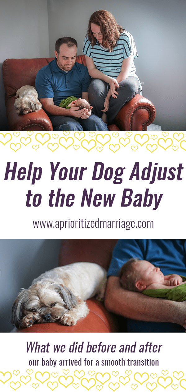 We had our dog for two years before our first baby came along. This is what we did to help him adjust to the new addition to our family and make the transition easier for everyone.