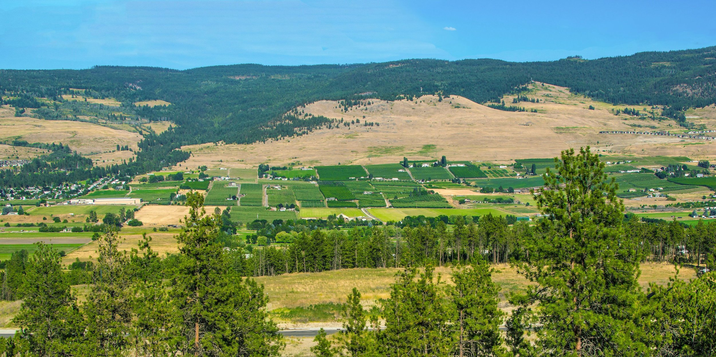 Views of the Okanagan from University Heights