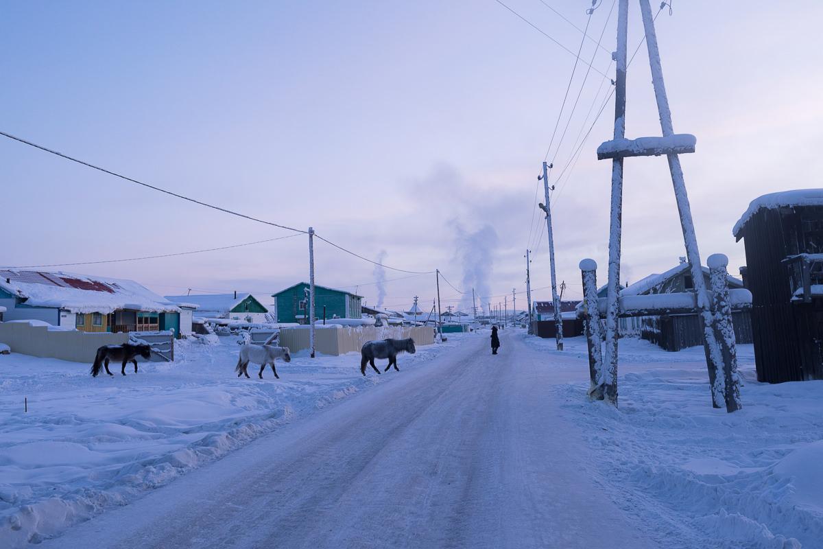 Briceportolano_Siberia_Site_04.jpg