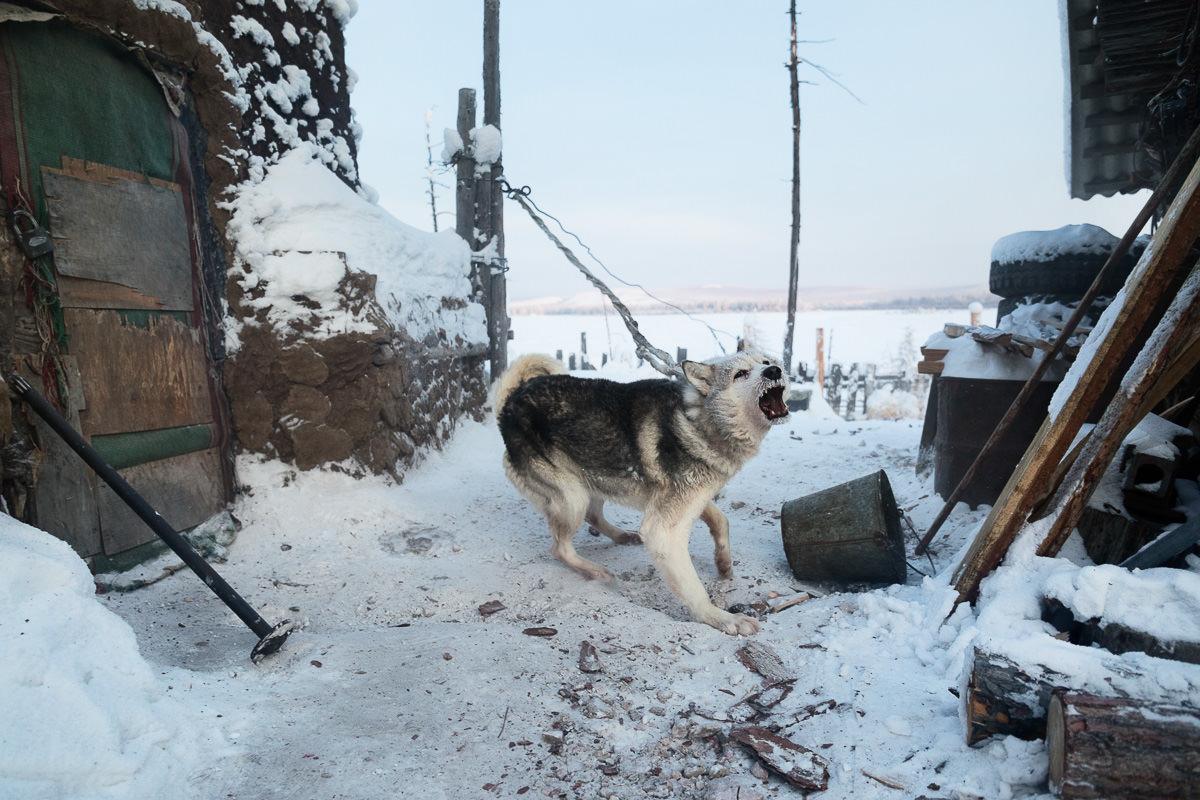 Briceportolano_Siberia_Site_12.jpg