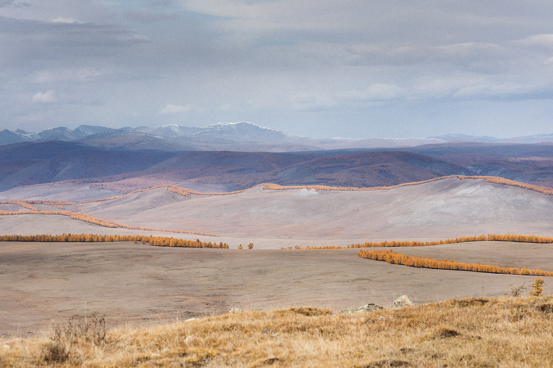 Briceportolano_Mongolia_Zaya_03_Site.jpg