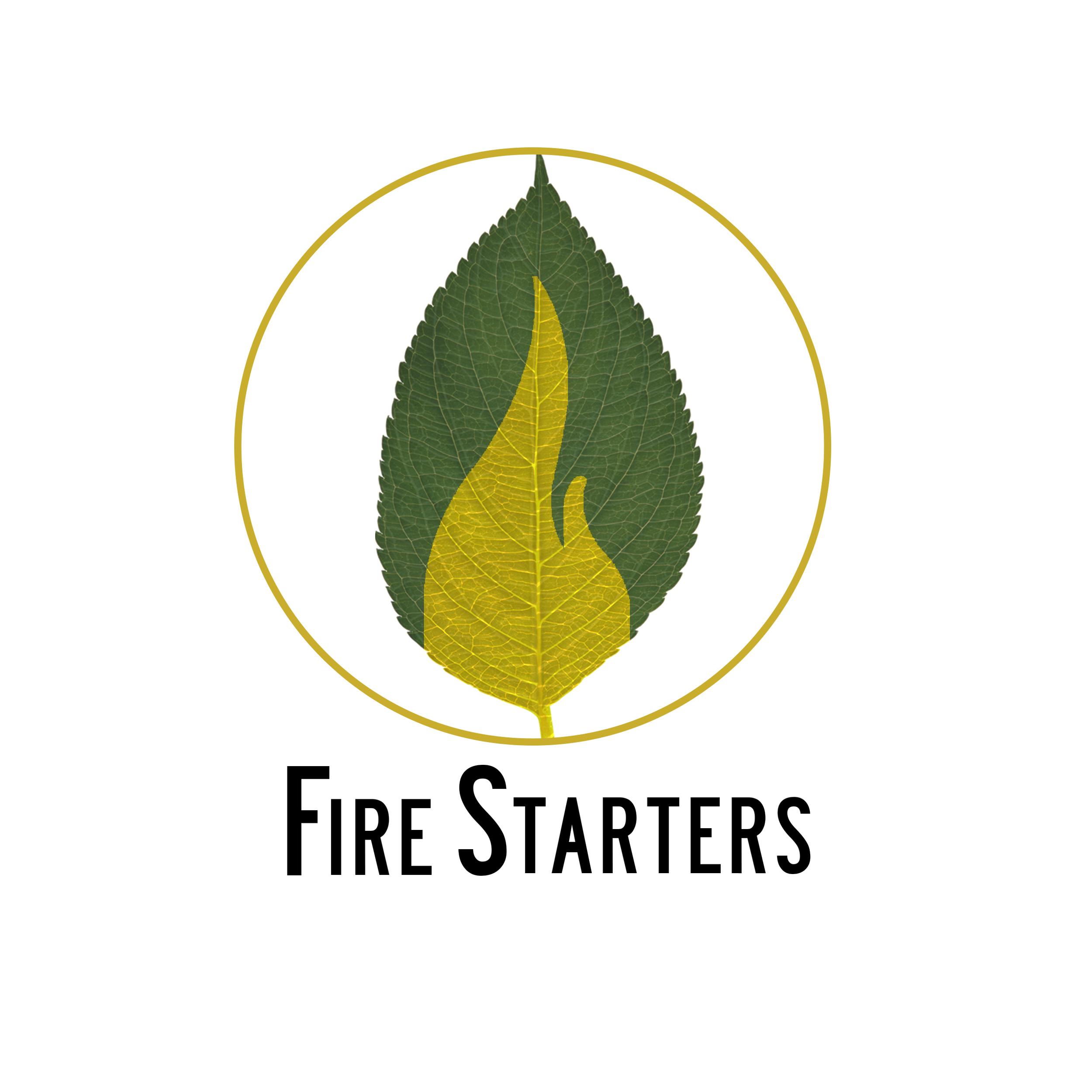 FS Logos+.jpg