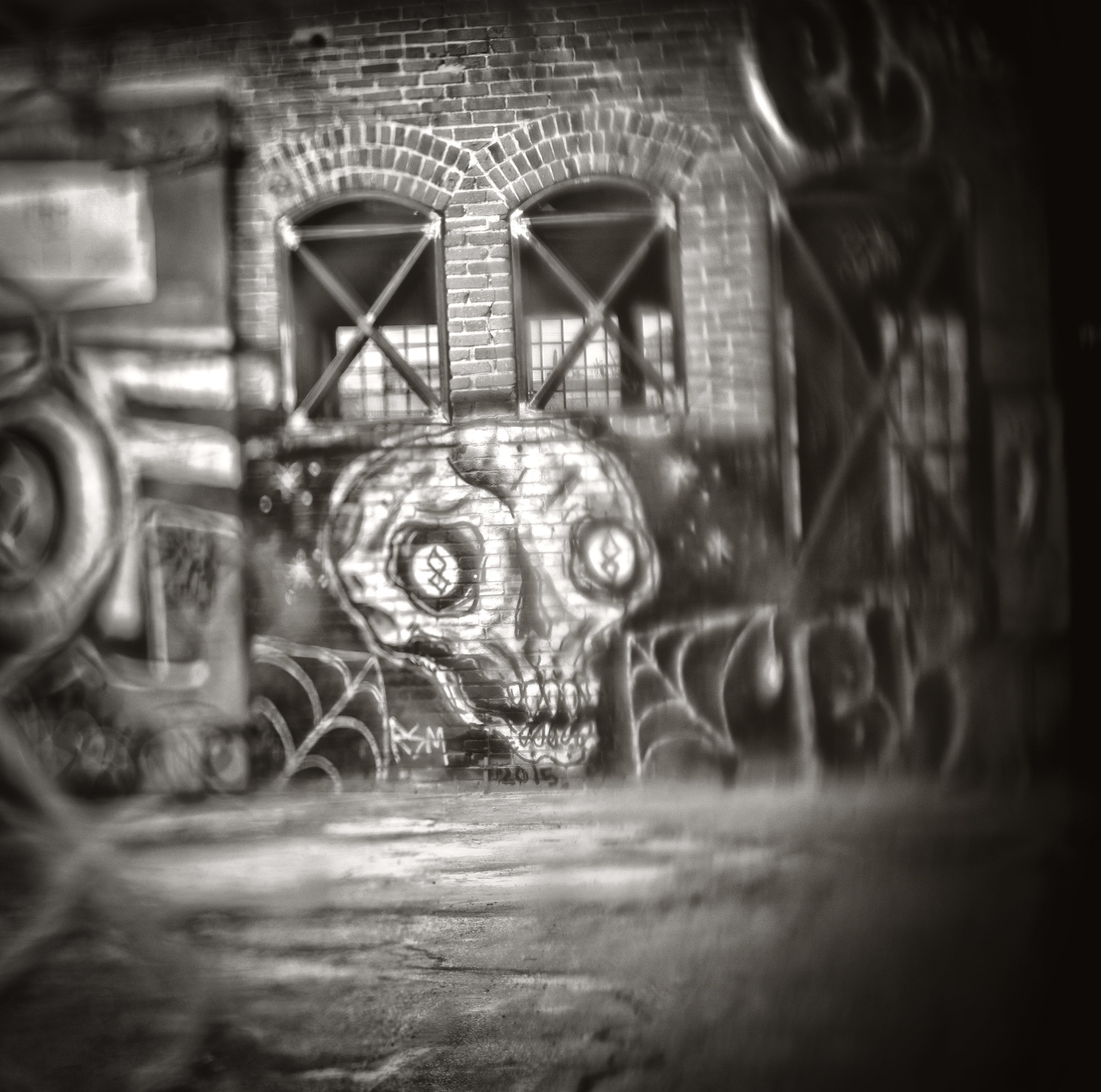 Skull_D.jpg