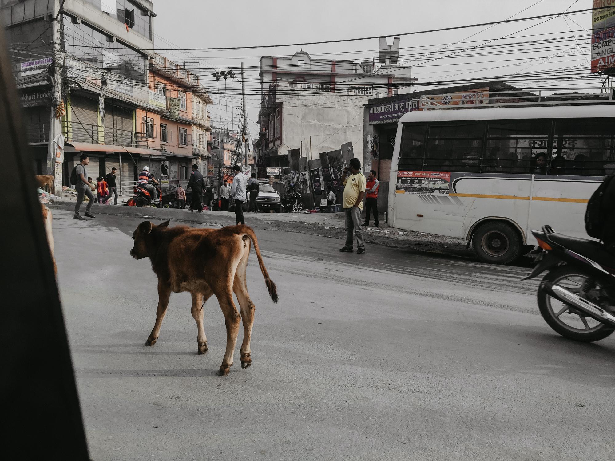 Nepal_JL_-1.jpg