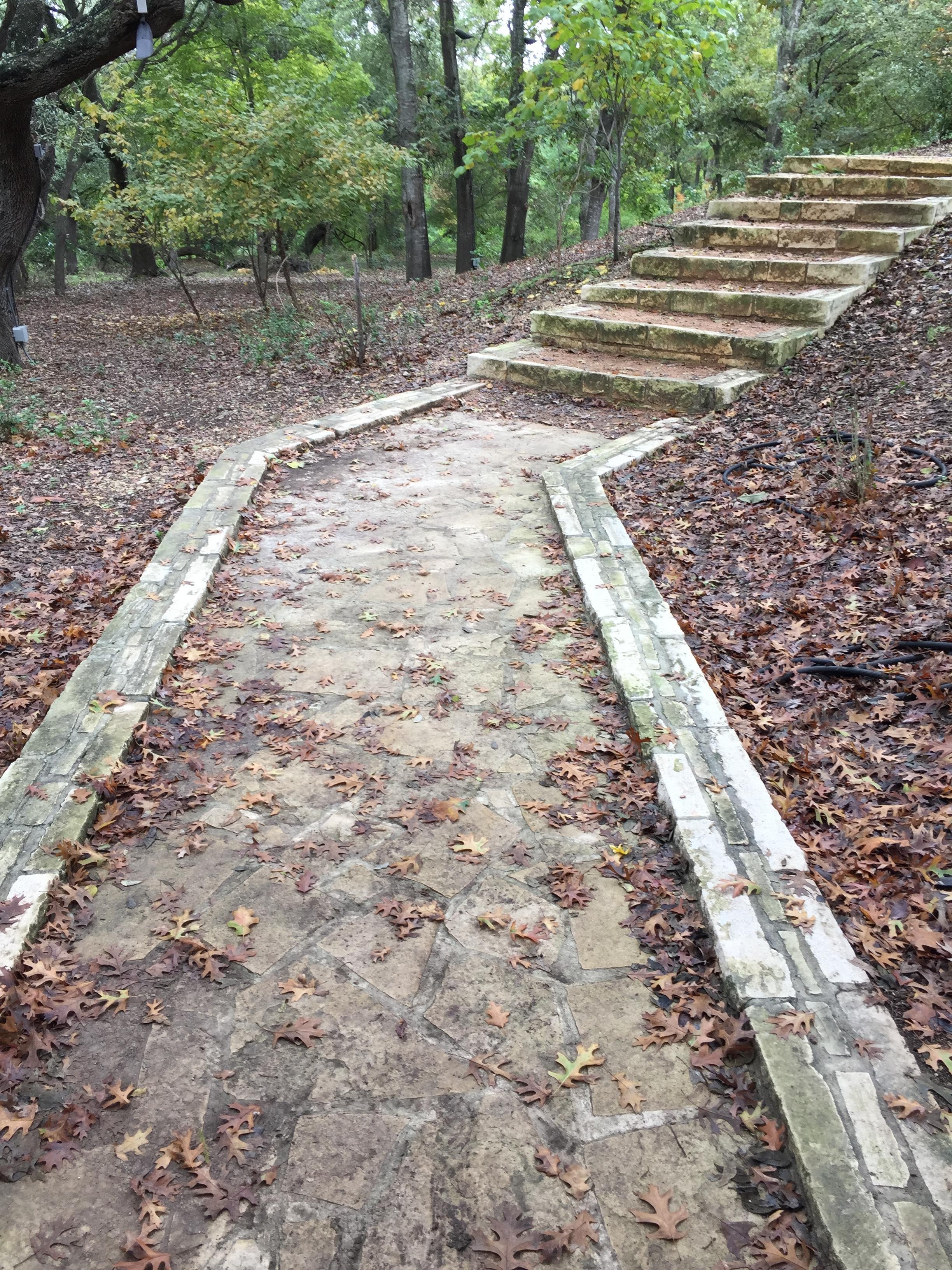 denmanestatepark-stairway