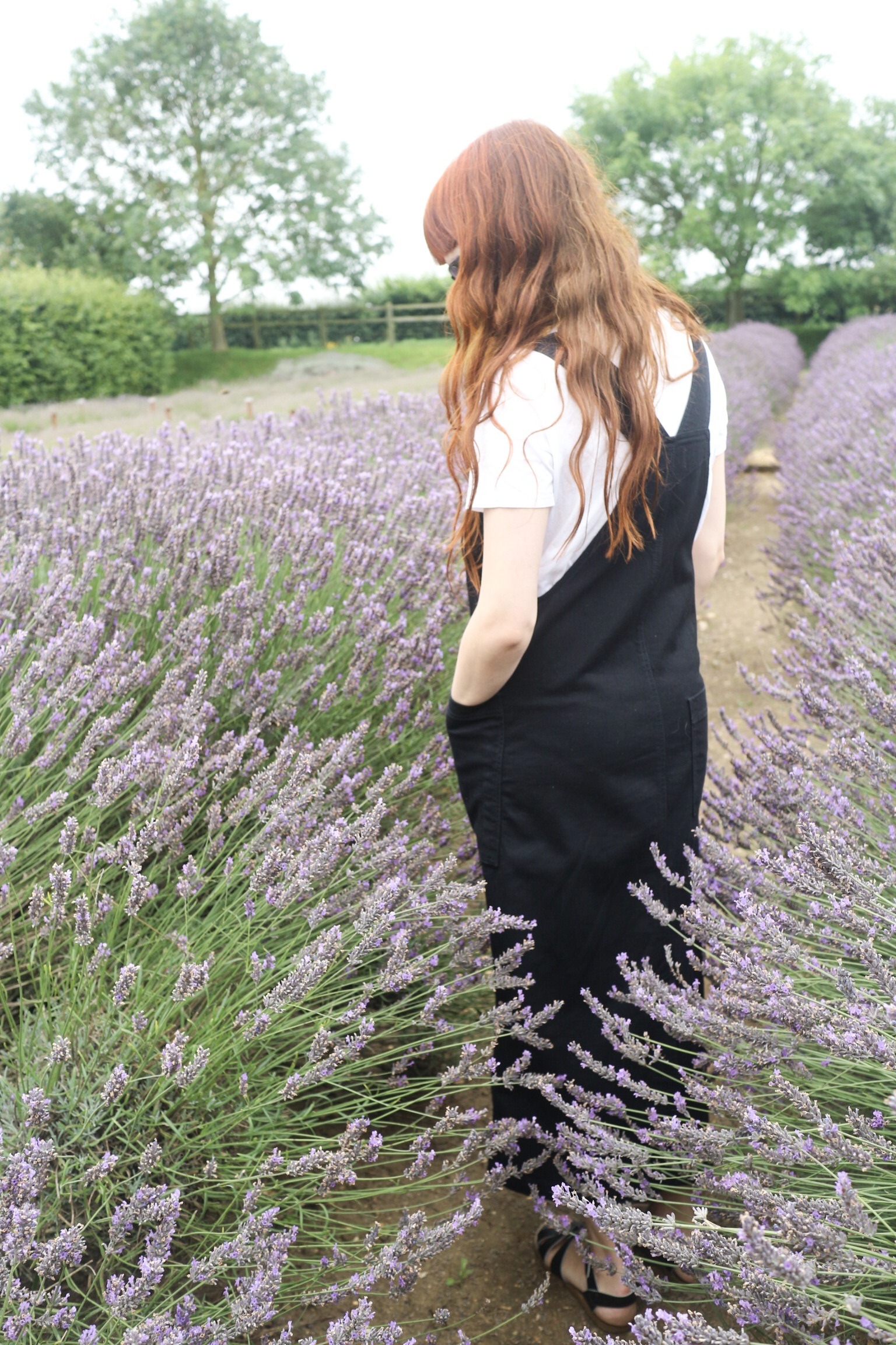 Field and Nest | Toast Apron Dress