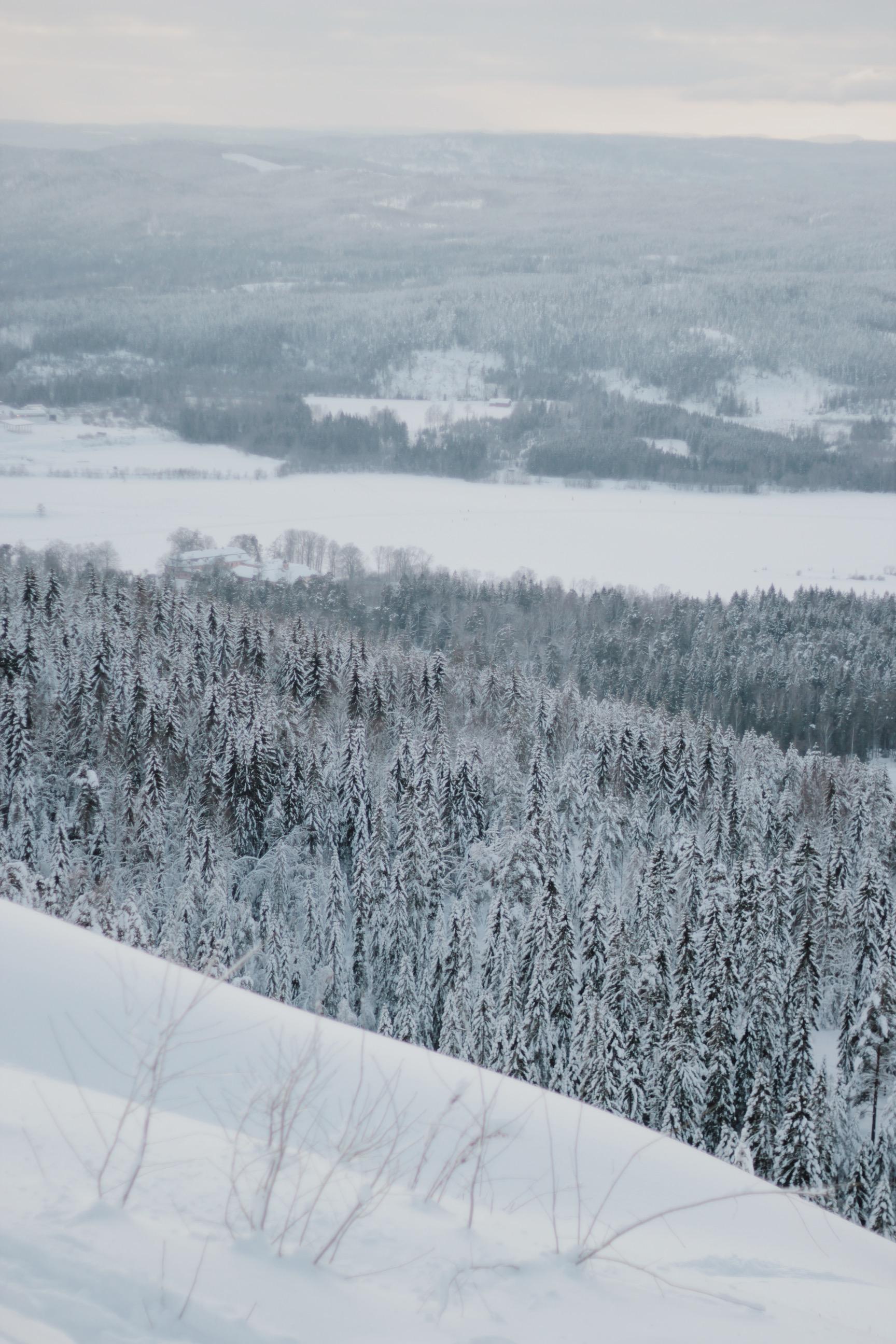 Friluftsliv in Oslo