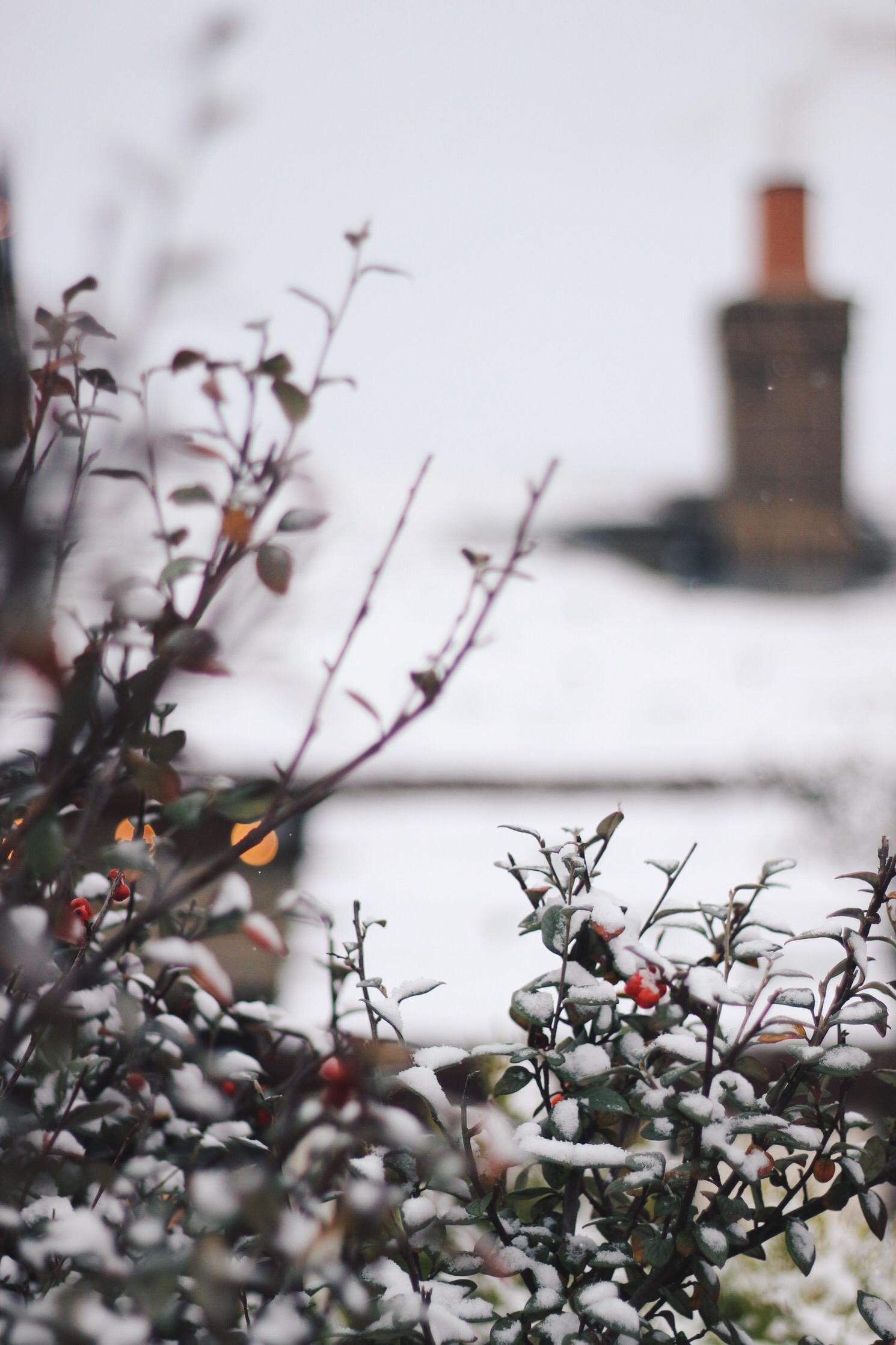 Snow Chimney Roof