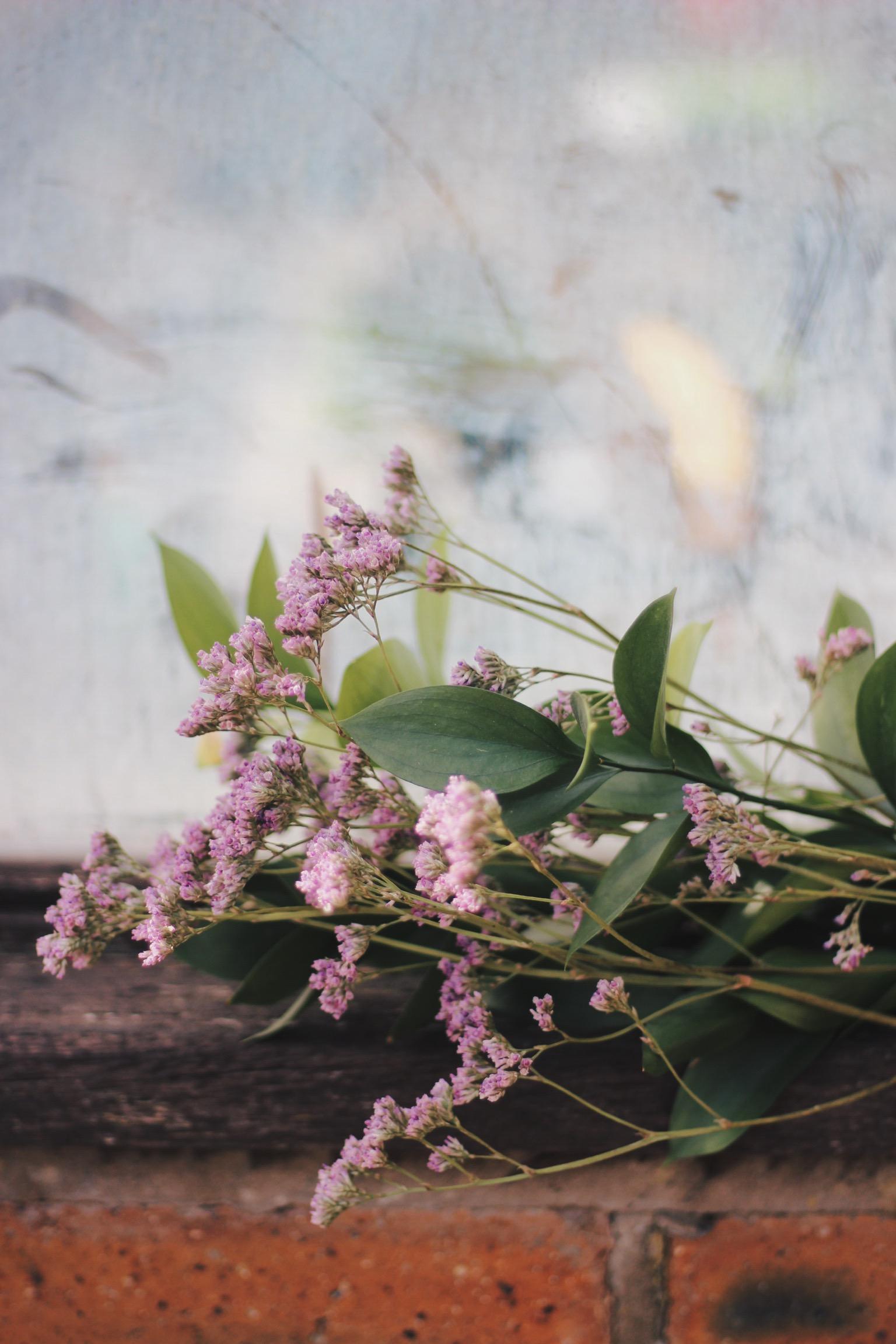 purple flowers in window