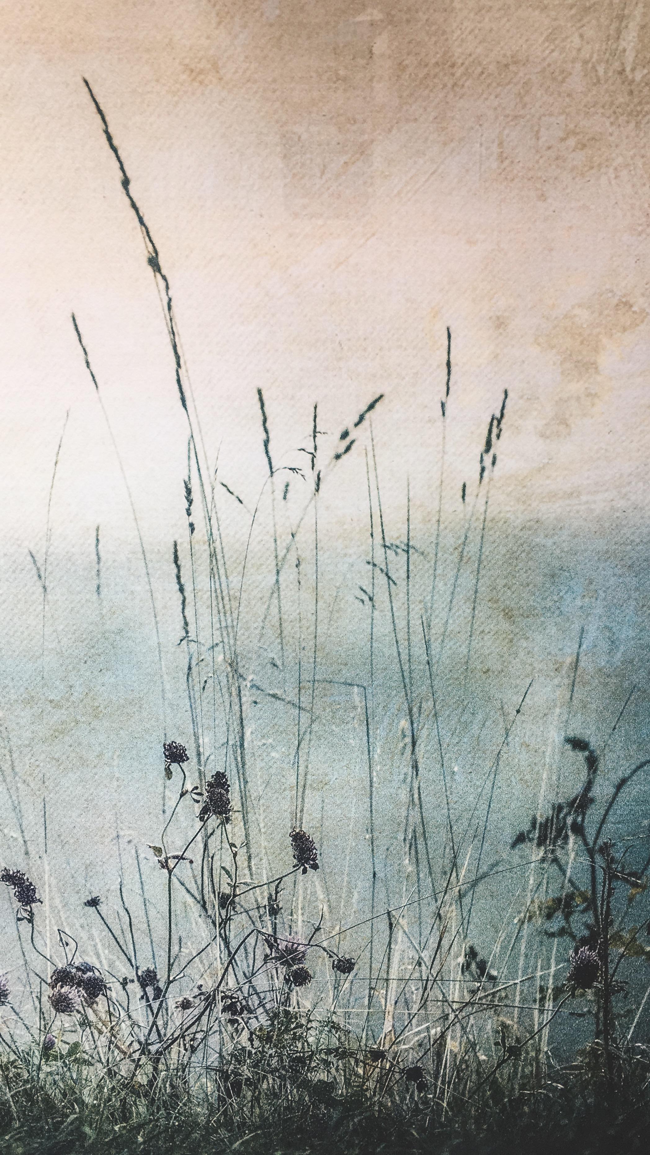 Floral meadow print