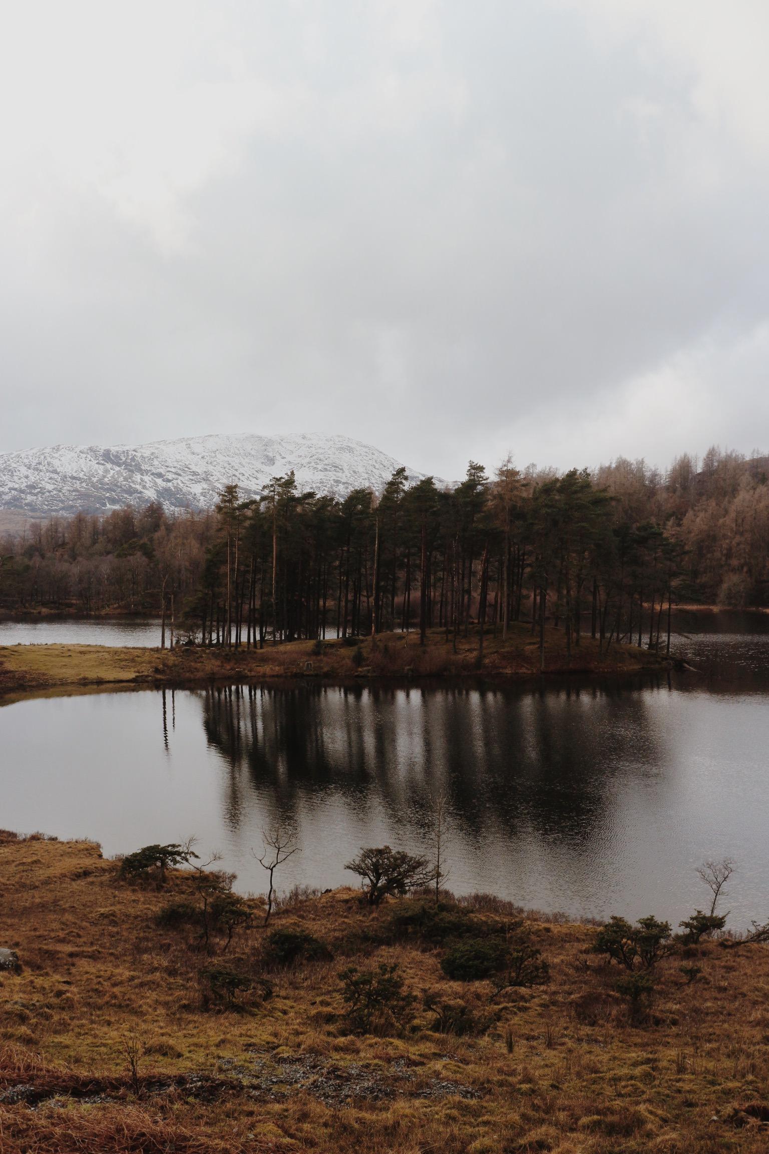 Lake District, Mountain Lake Forest Winter